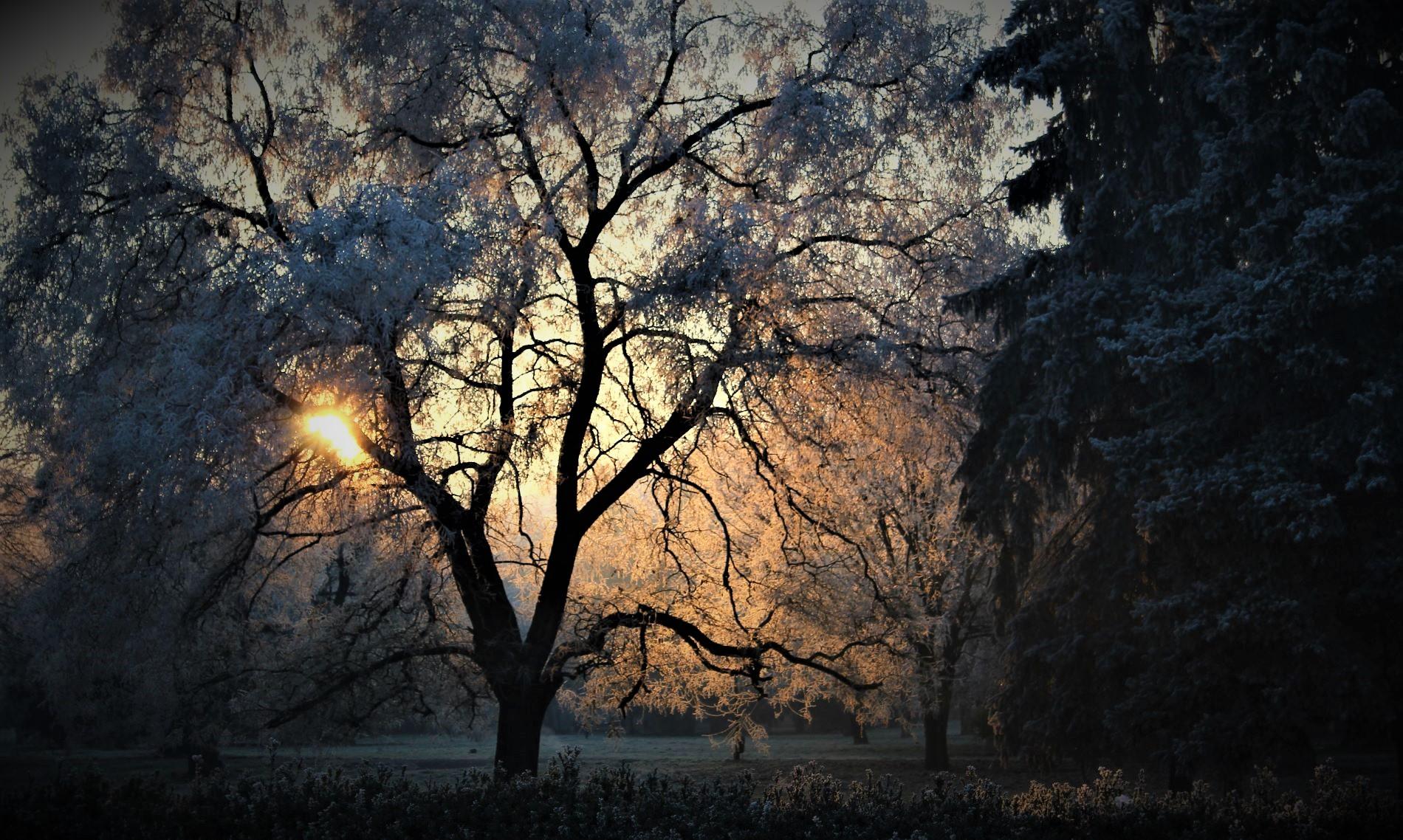 мразовити утрини   Author tanovsky   PHOTO FORUM
