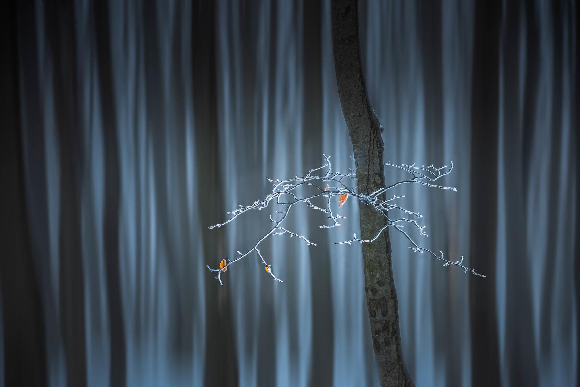 Приказна гора   Author Pablo79   PHOTO FORUM