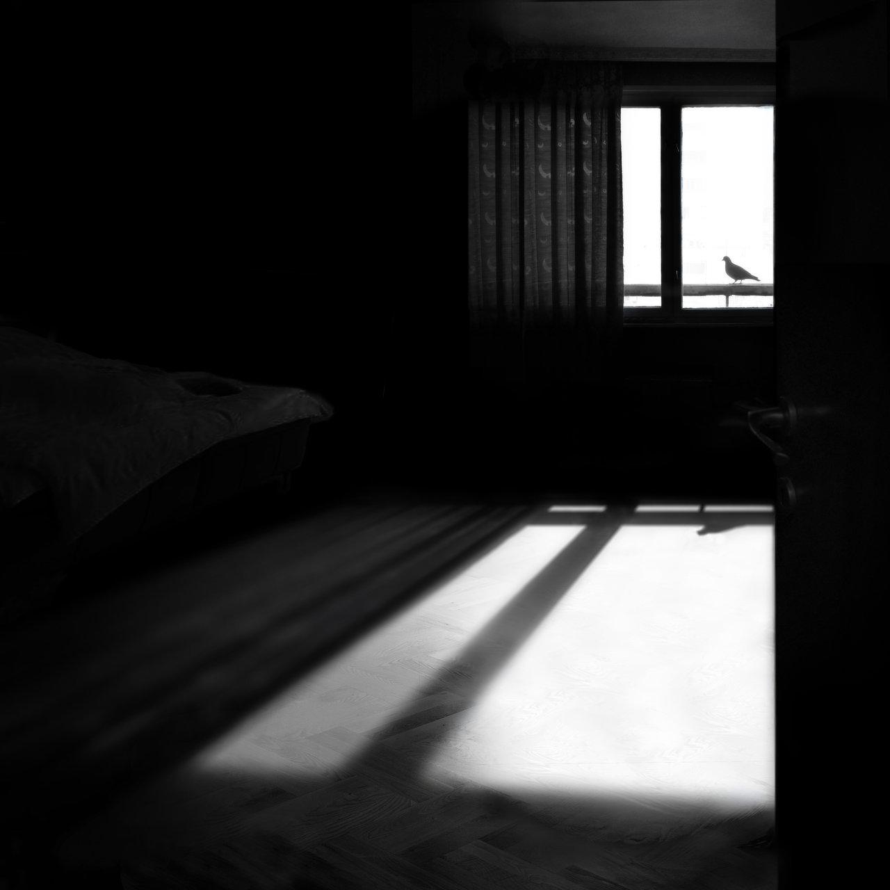 ...не си отивай тихо във нощта....   Author шдфдшд   PHOTO FORUM