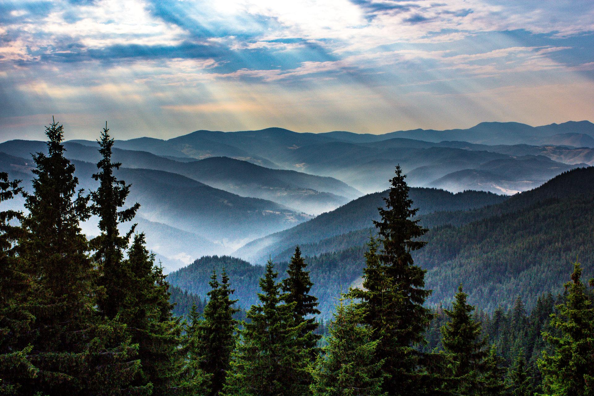 Красотата на природата   Author Victoria Mircheva - victoriamircheva   PHOTO FORUM