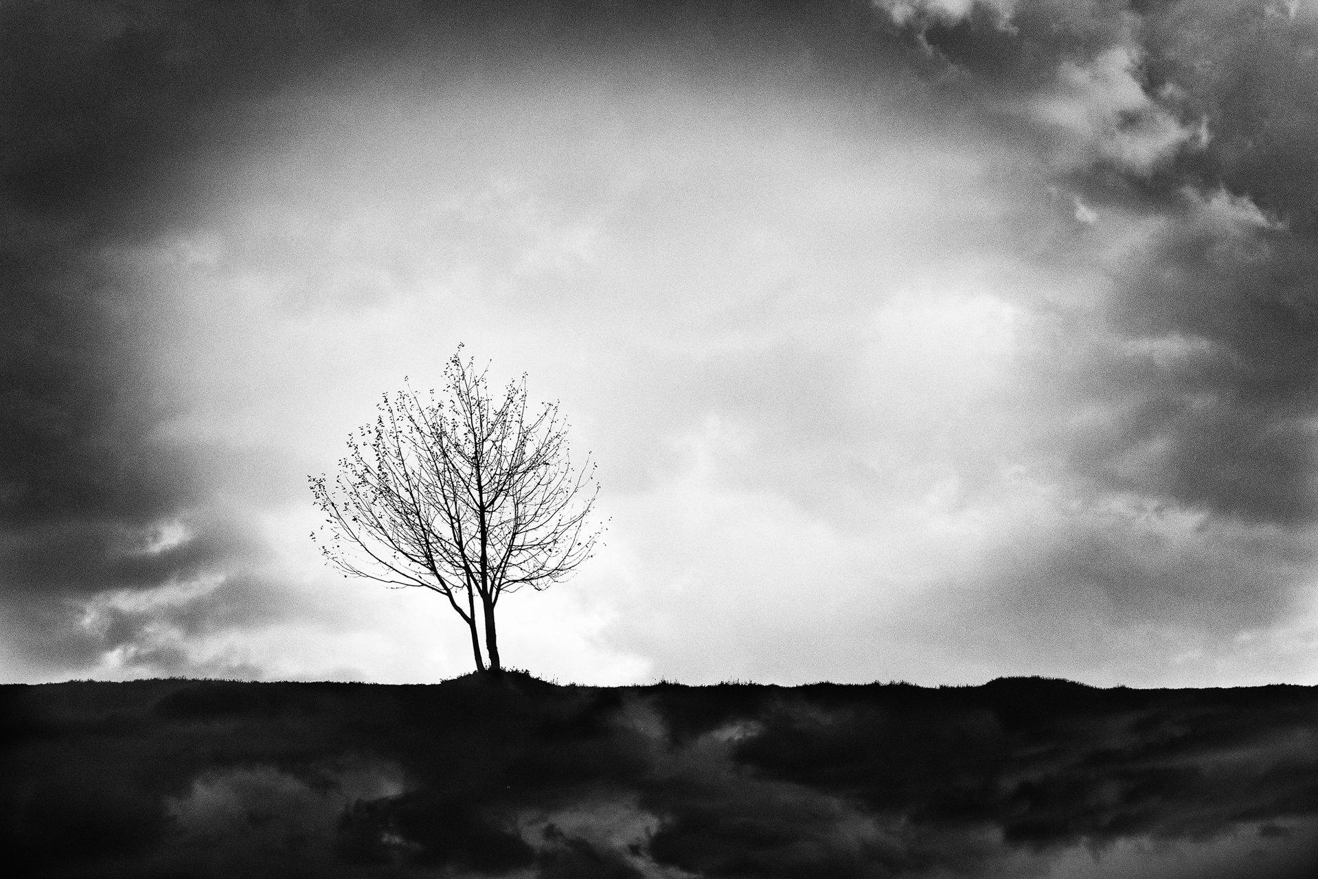 кръговрат | Author Мариана Добрева - leica_m | PHOTO FORUM