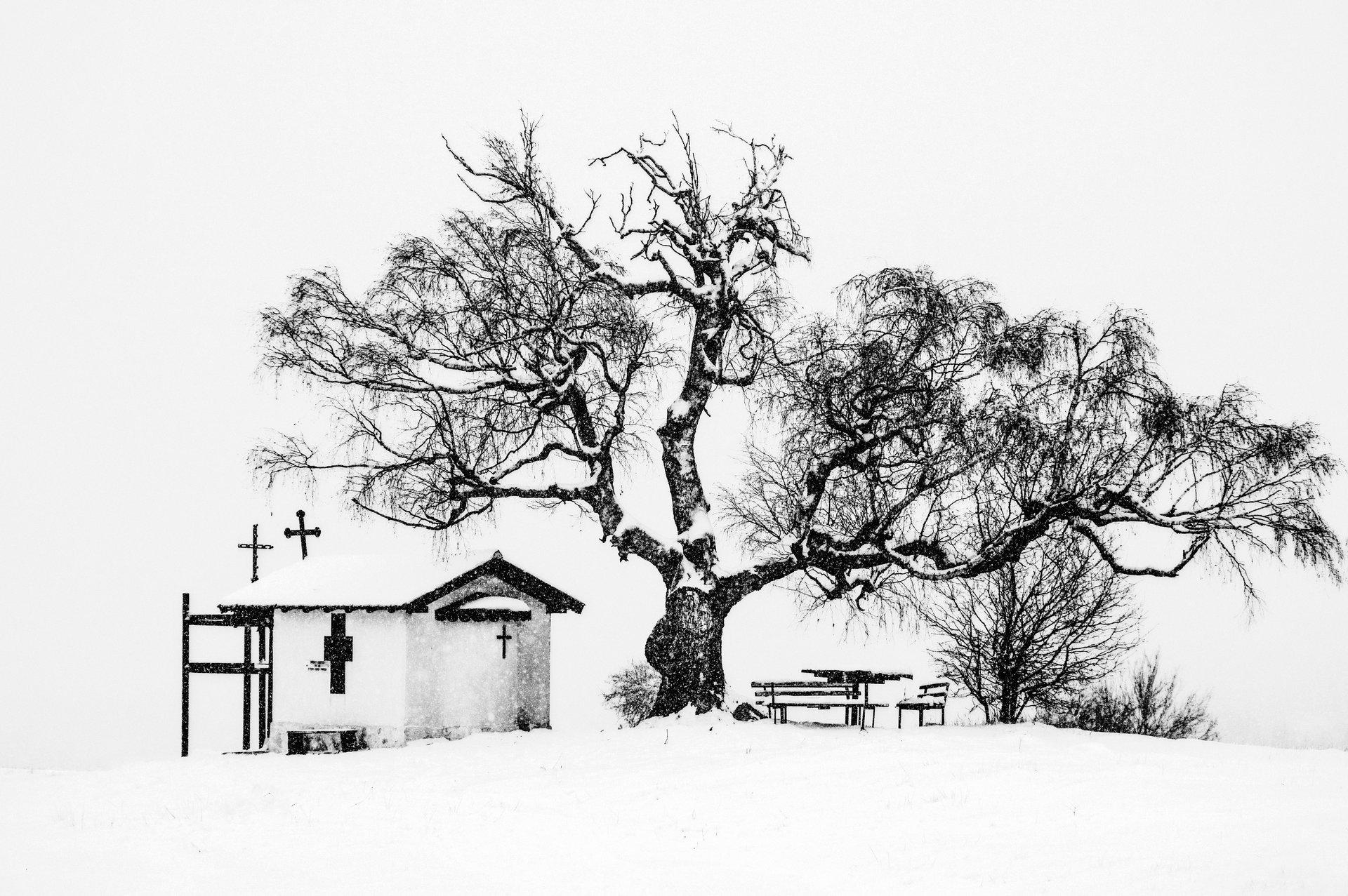 Photo in Landscape | Author sunnyhope | PHOTO FORUM