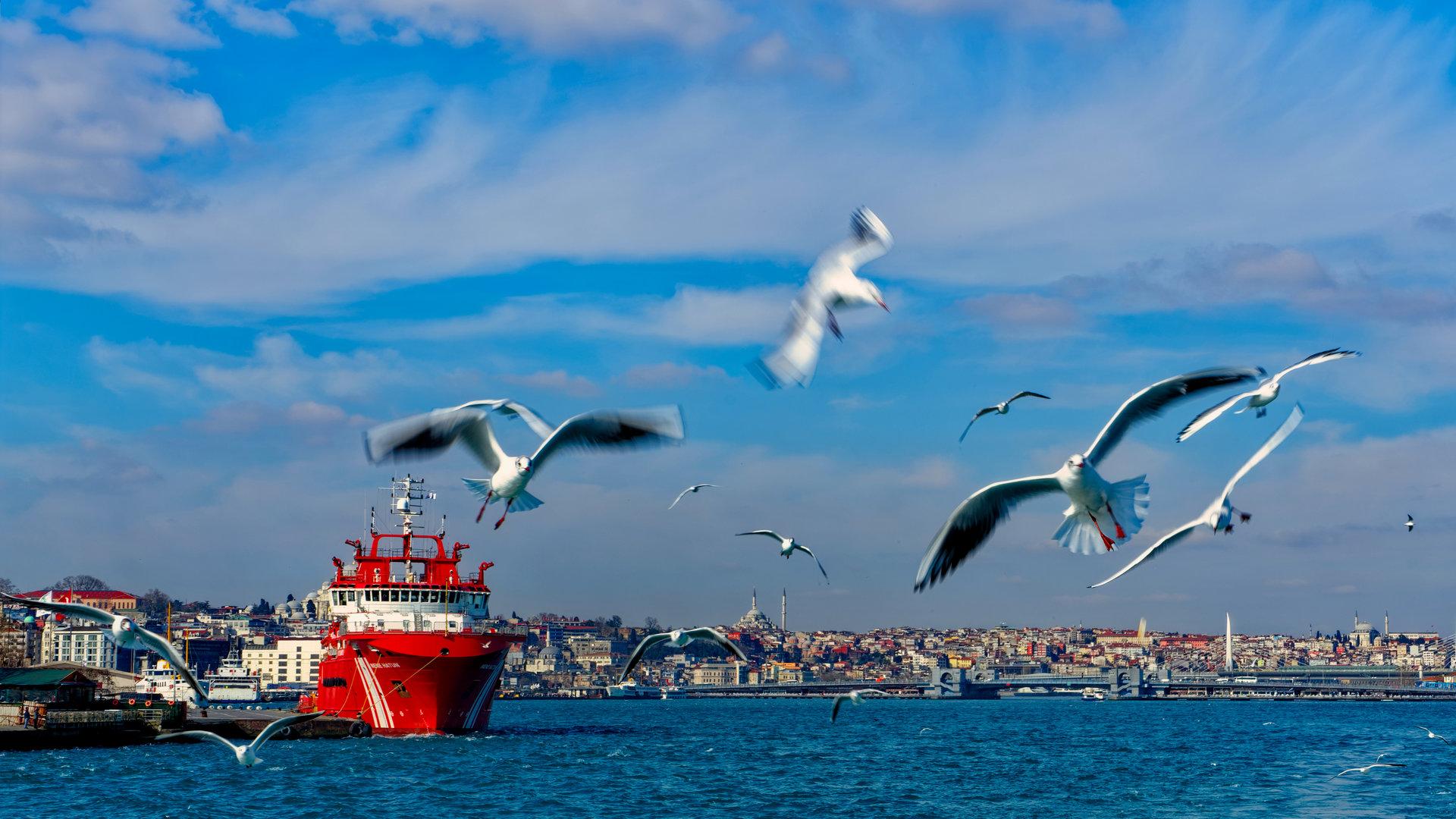Photo in Travels | Author Arian Shkaki - MrBean | PHOTO FORUM