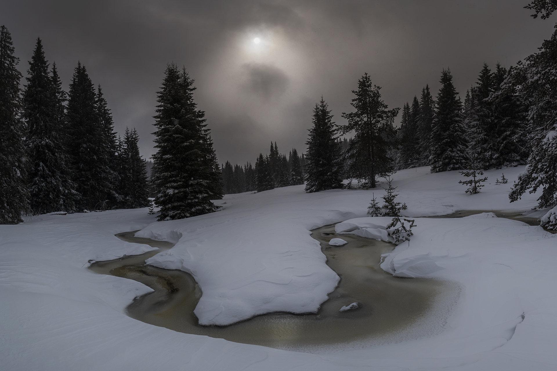 Зима в Родопите   Author Jonko Rusev - Yonko_Rusev   PHOTO FORUM