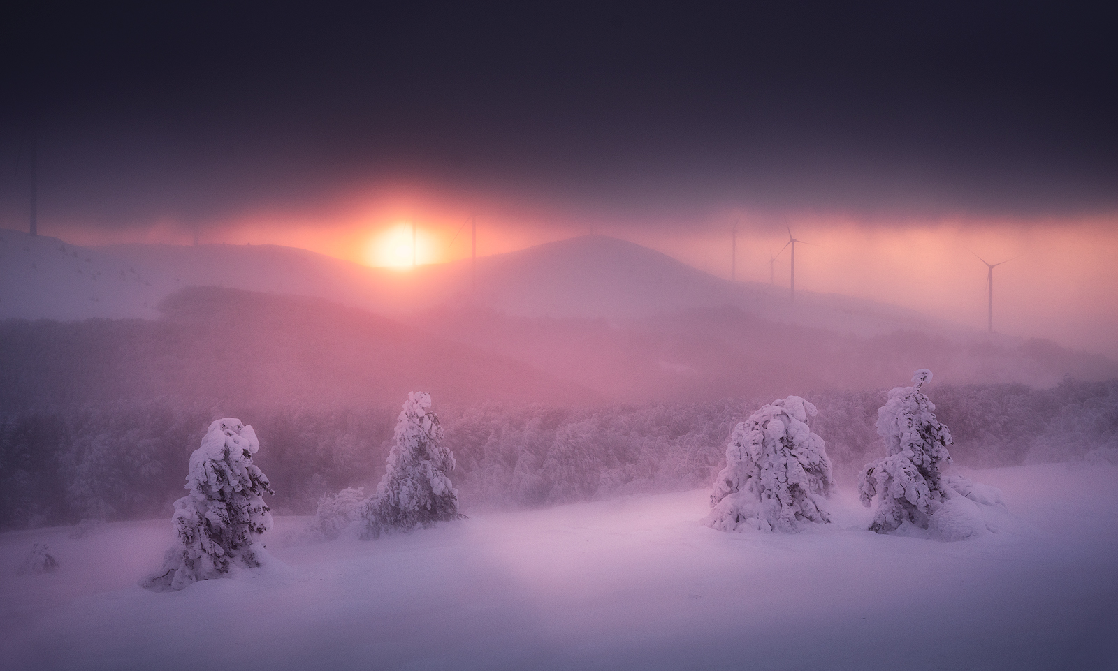 Fireball | Author Иван Миладинов - Jirko | PHOTO FORUM