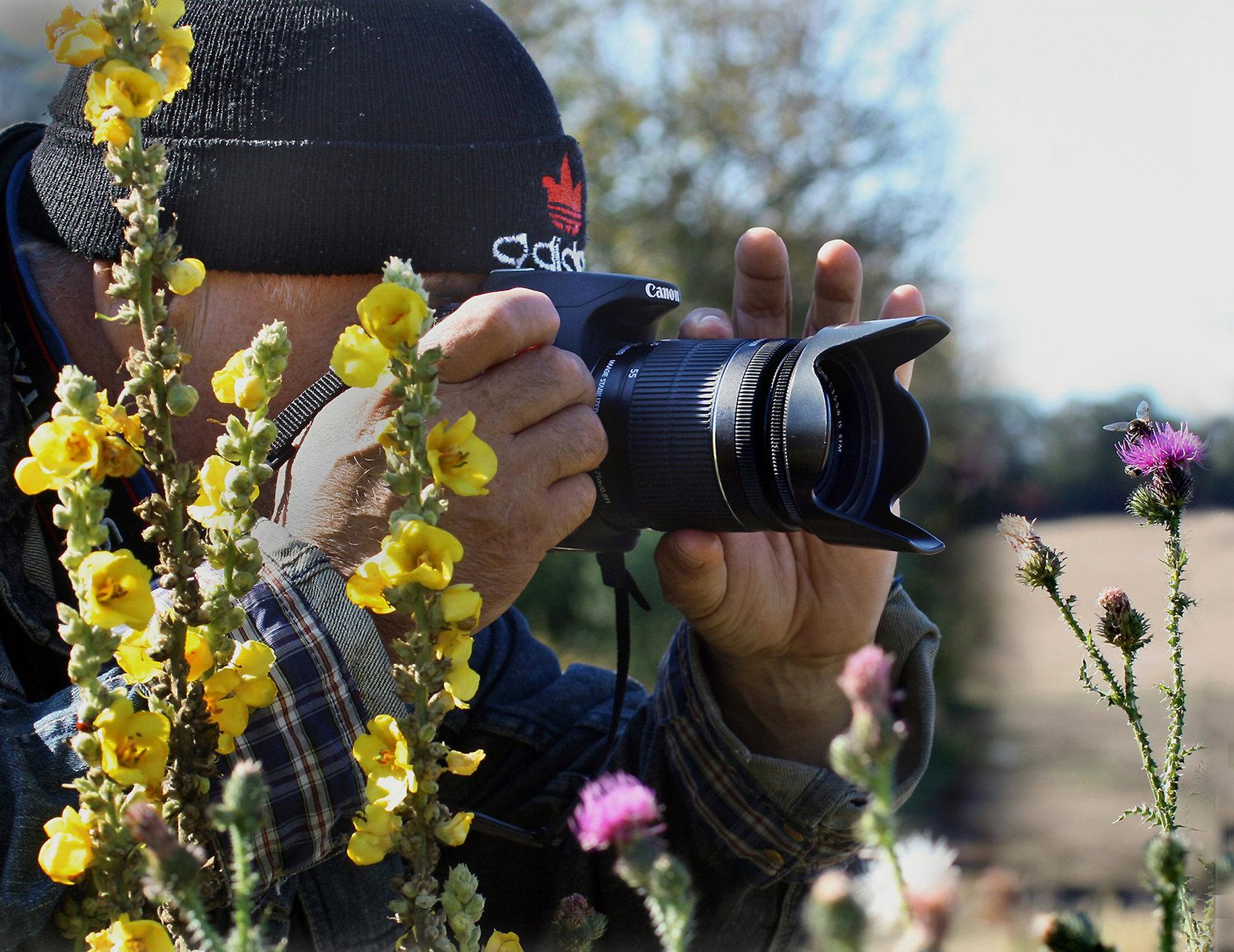 Photo in Macro | Author Ihif | PHOTO FORUM