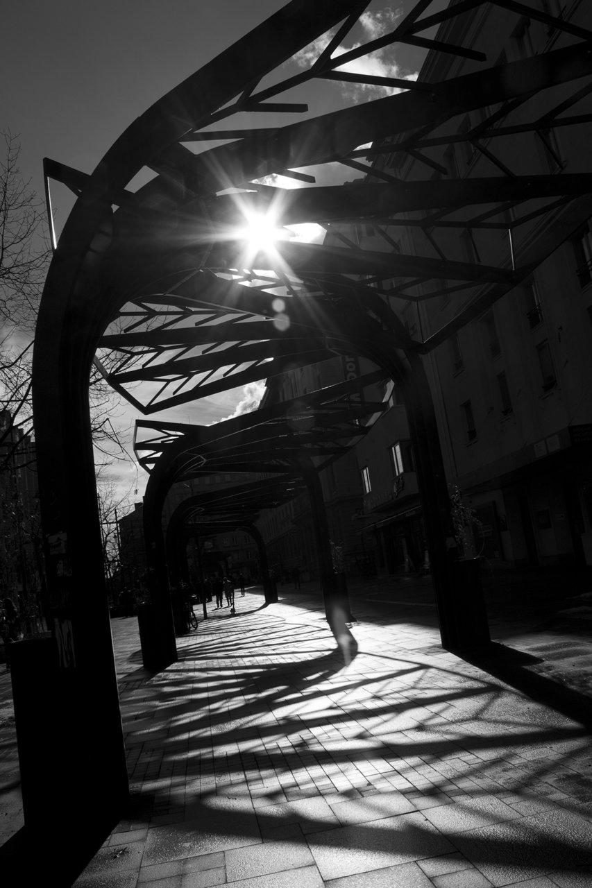lights and shadows | Author Lubomila Dimitrova - pisi_18 | PHOTO FORUM