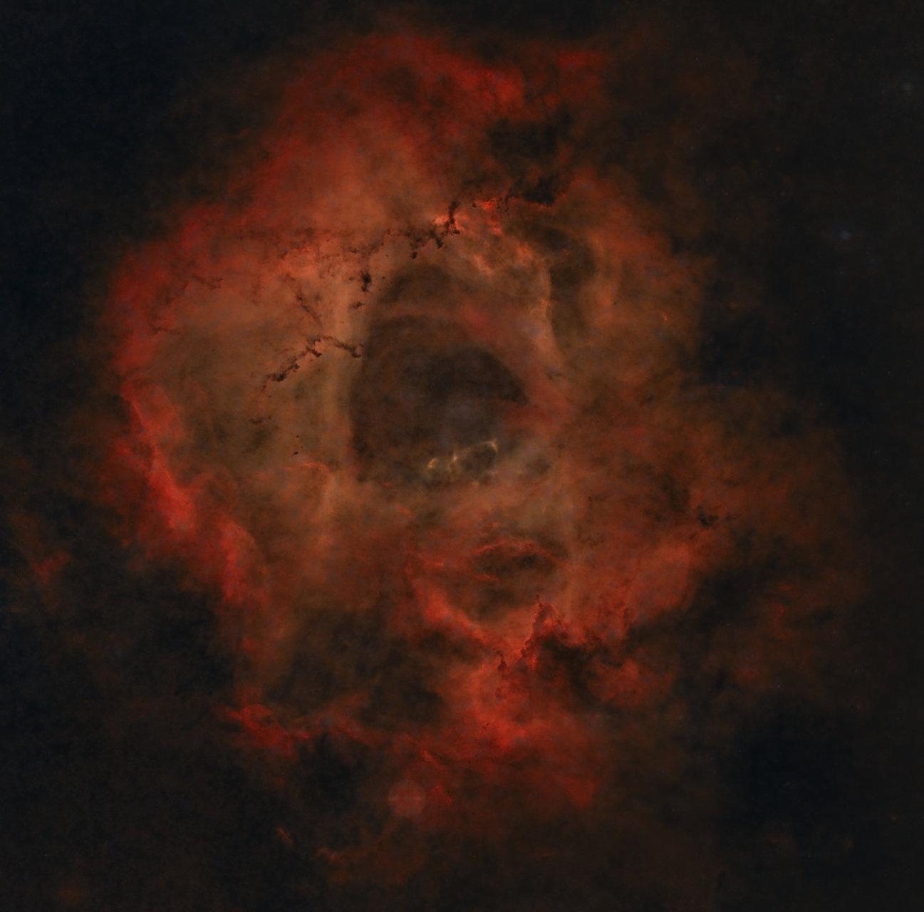 Rosette Starless | Author Ivan Raichev - sektor | PHOTO FORUM