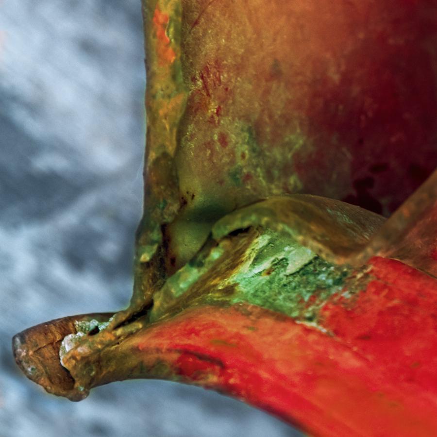 Устните ти алени | Author Ira Gencheva - ARIGO | PHOTO FORUM