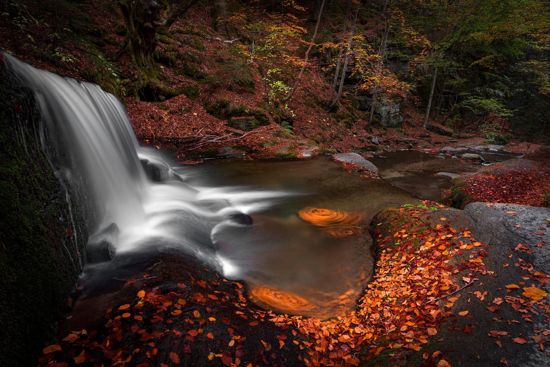 Есенна импресия | Author Mariyana Atanasova - Lucero | PHOTO FORUM