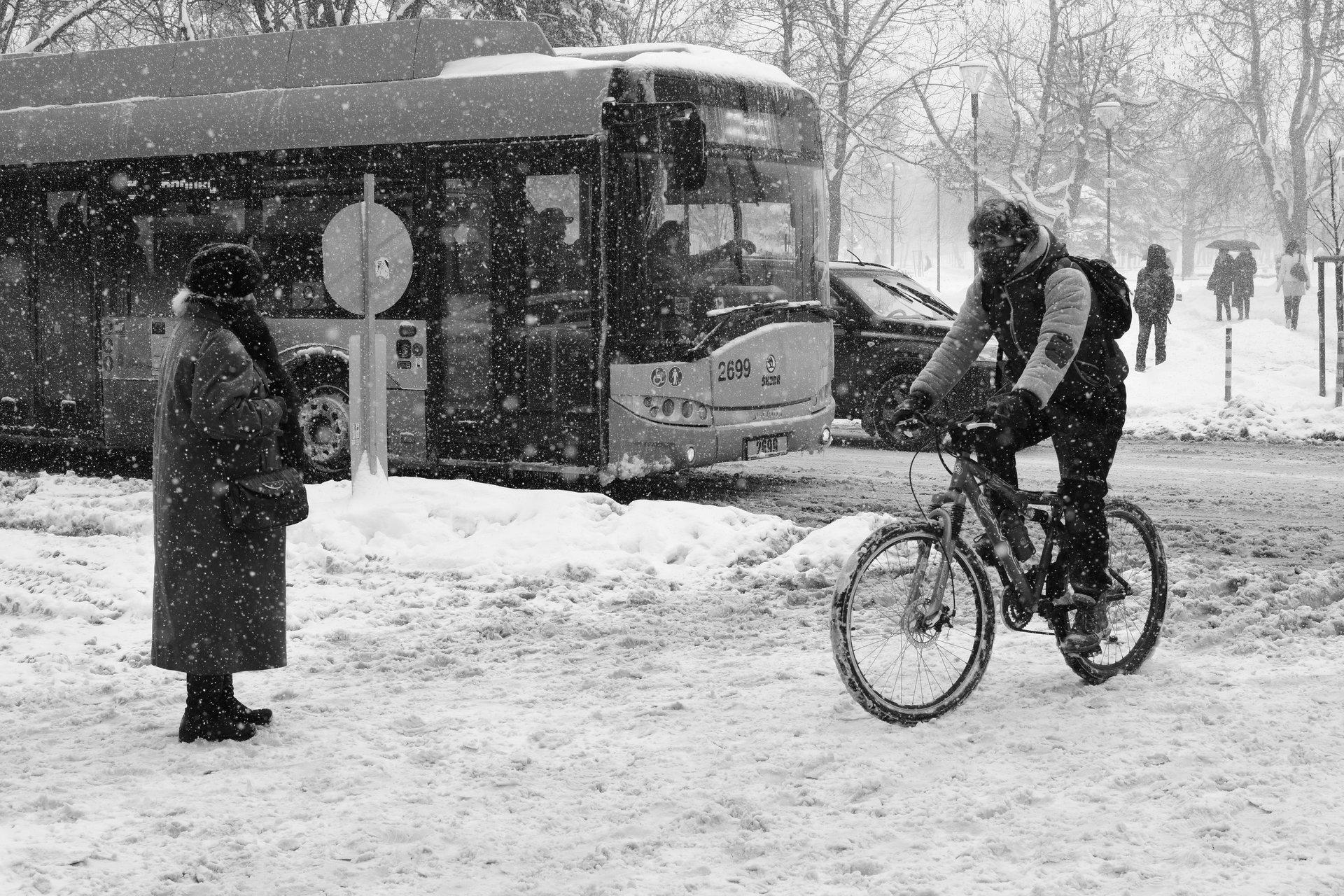 В снега.... | Author veskas | PHOTO FORUM