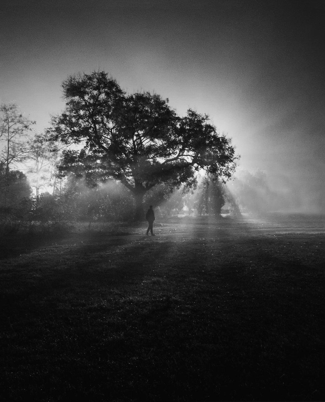 Някъде, някога | Author Ellinka | PHOTO FORUM