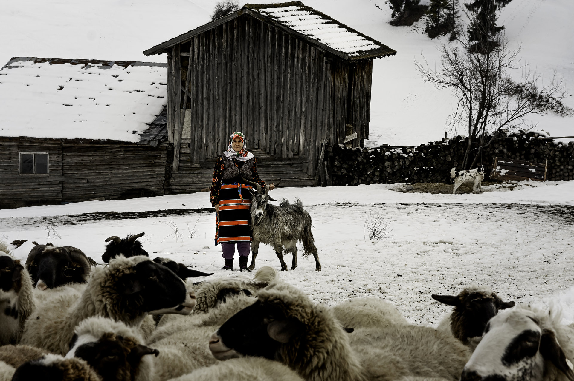 Photo in Reportage | Author sunnyhope | PHOTO FORUM