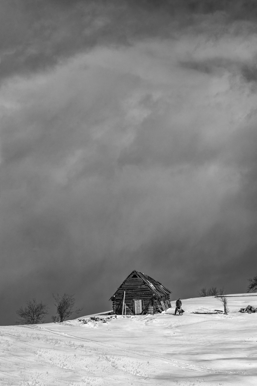 Зима е | Author ЗдравкоЧавдаров | PHOTO FORUM