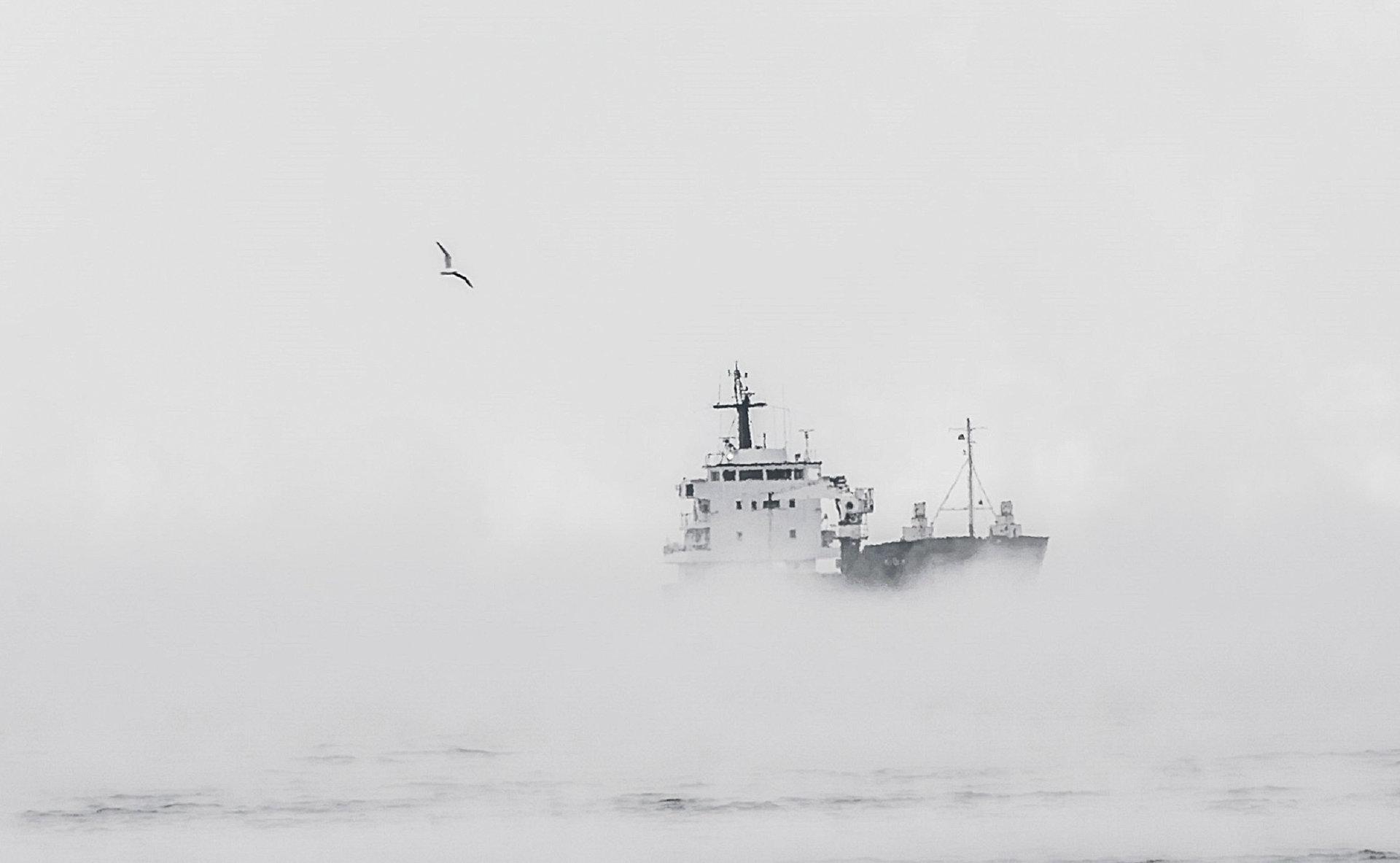 Пристигане | Author dorascal18 | PHOTO FORUM