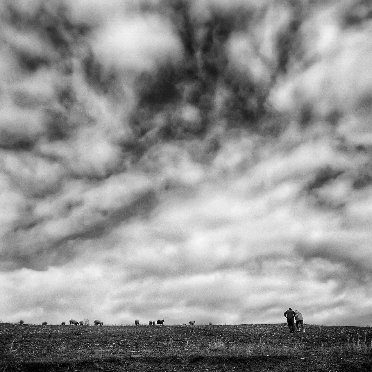 Photo in Daily round | Author kudra | PHOTO FORUM