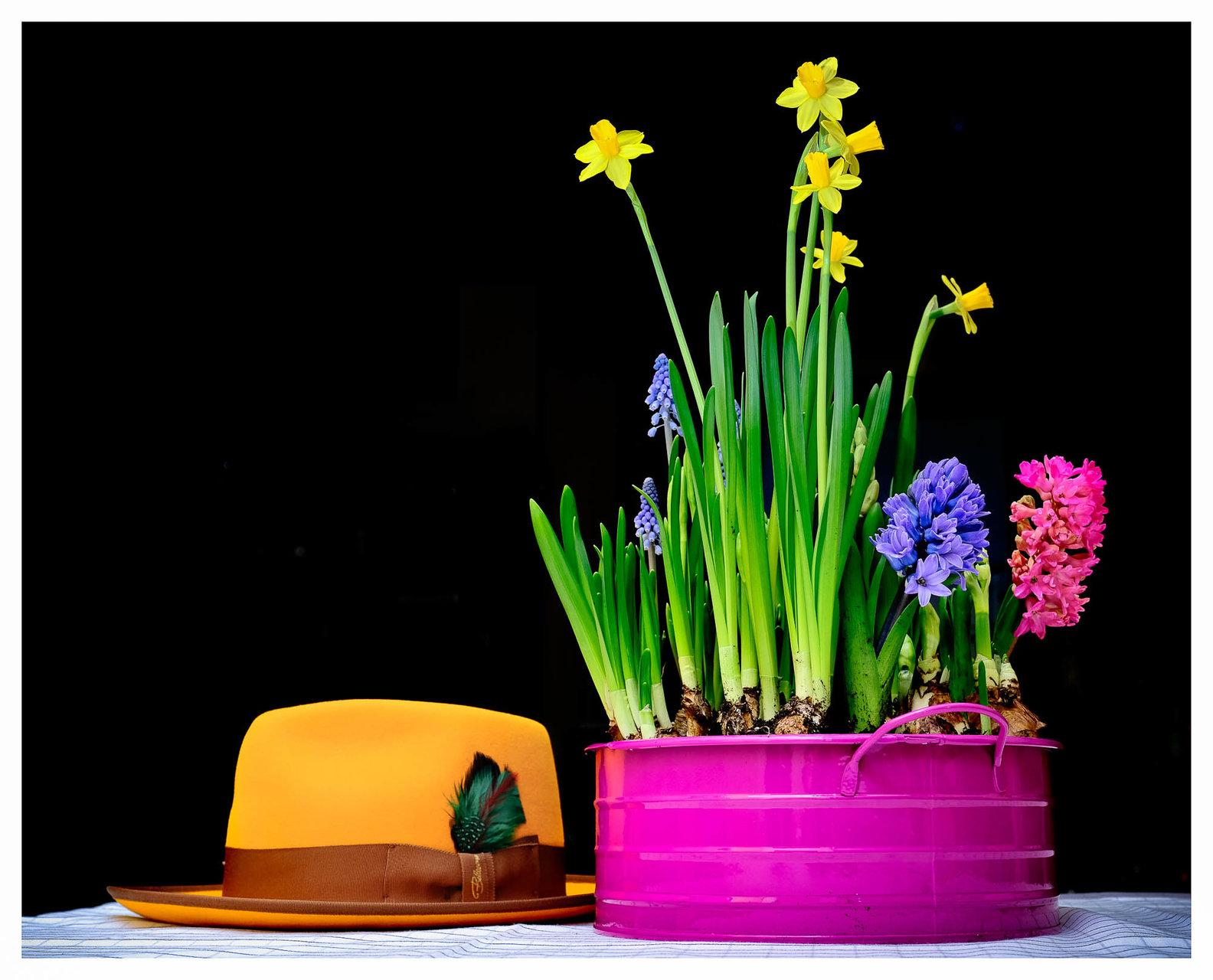 дръж ми шапката | Author Georgi Alexandrov - ohluff | PHOTO FORUM