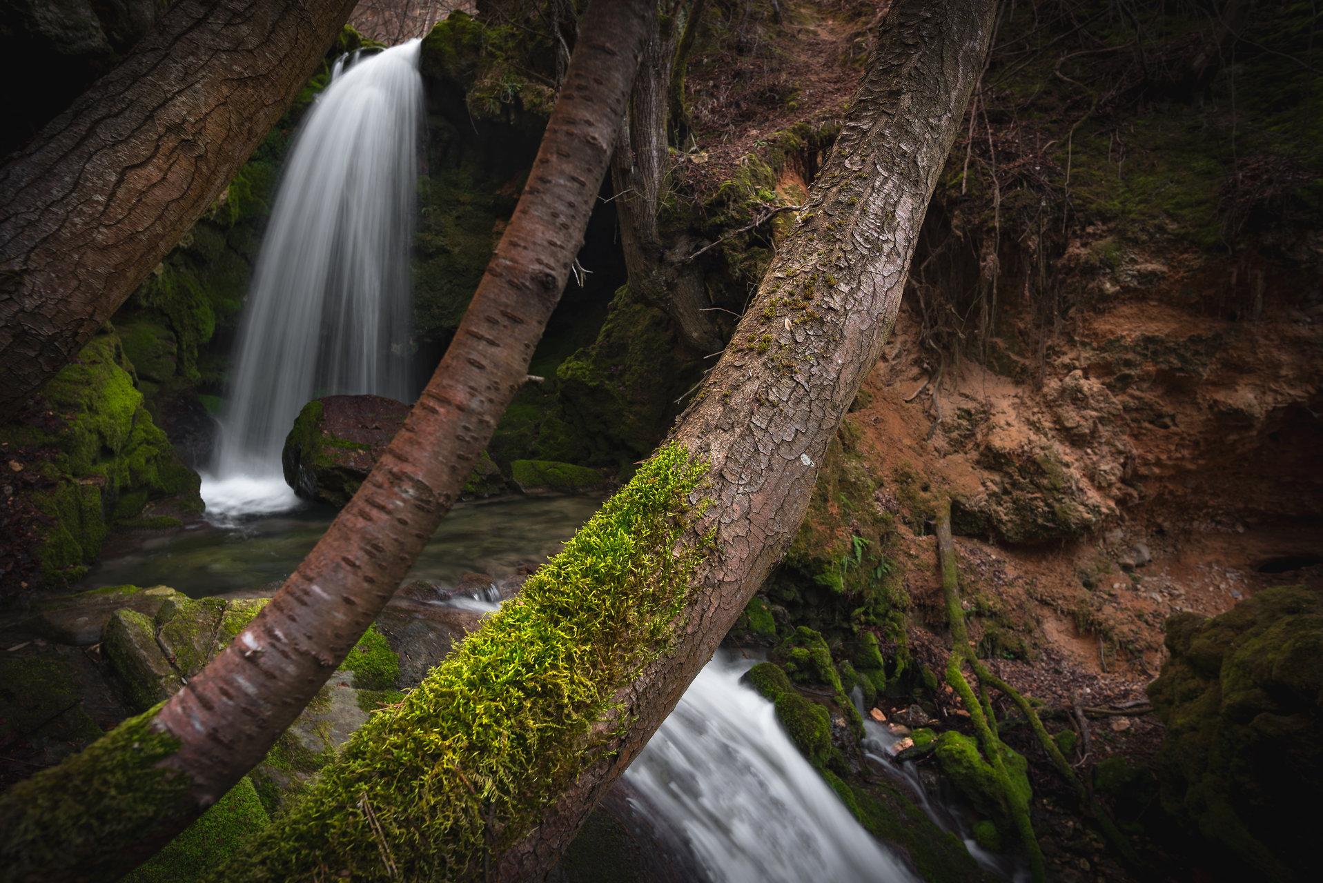 Photo in Nature | Author Mariyana Atanasova - Lucero | PHOTO FORUM