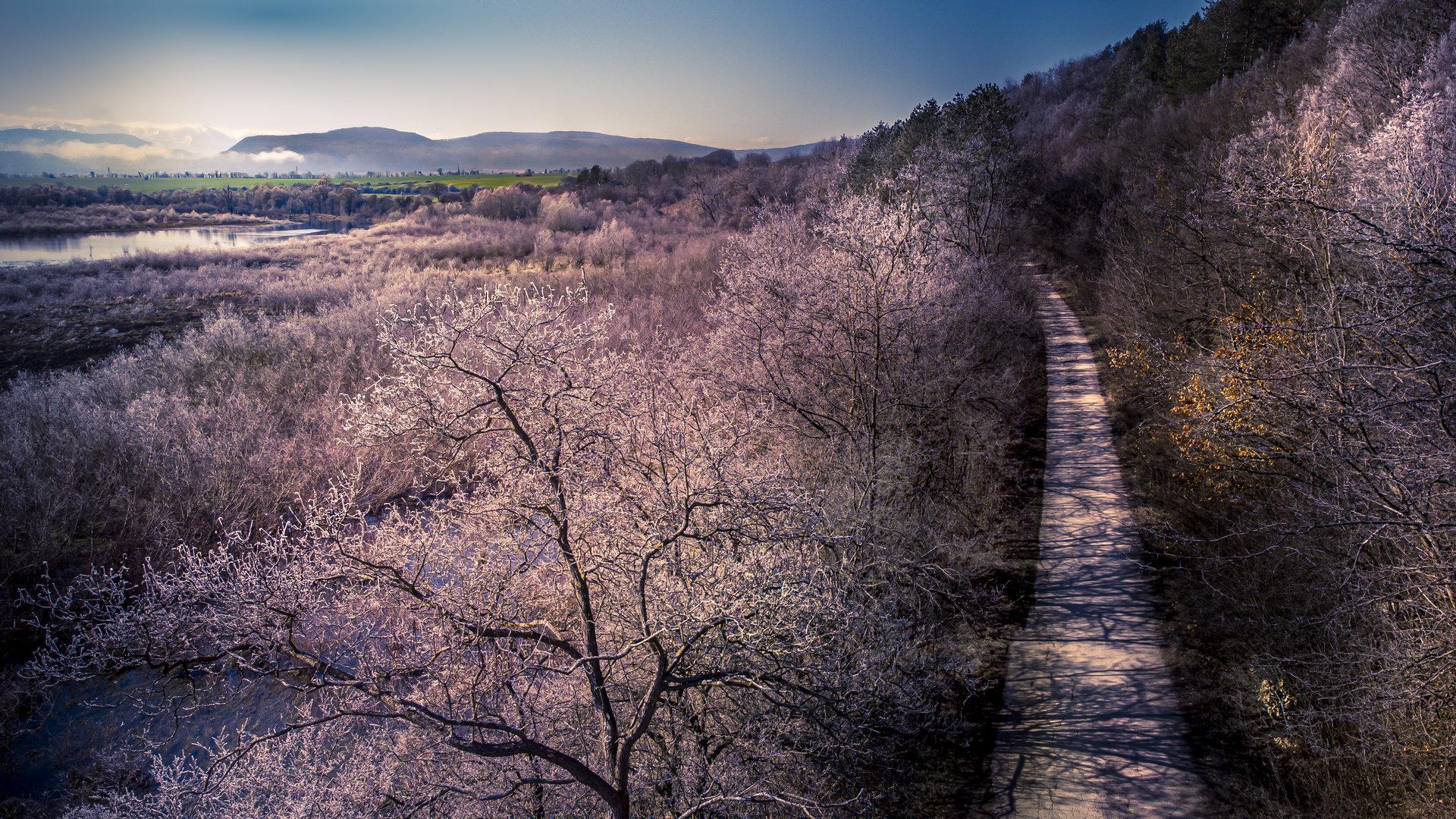 пътя... | Author Стойо Цонев - Stoizant | PHOTO FORUM