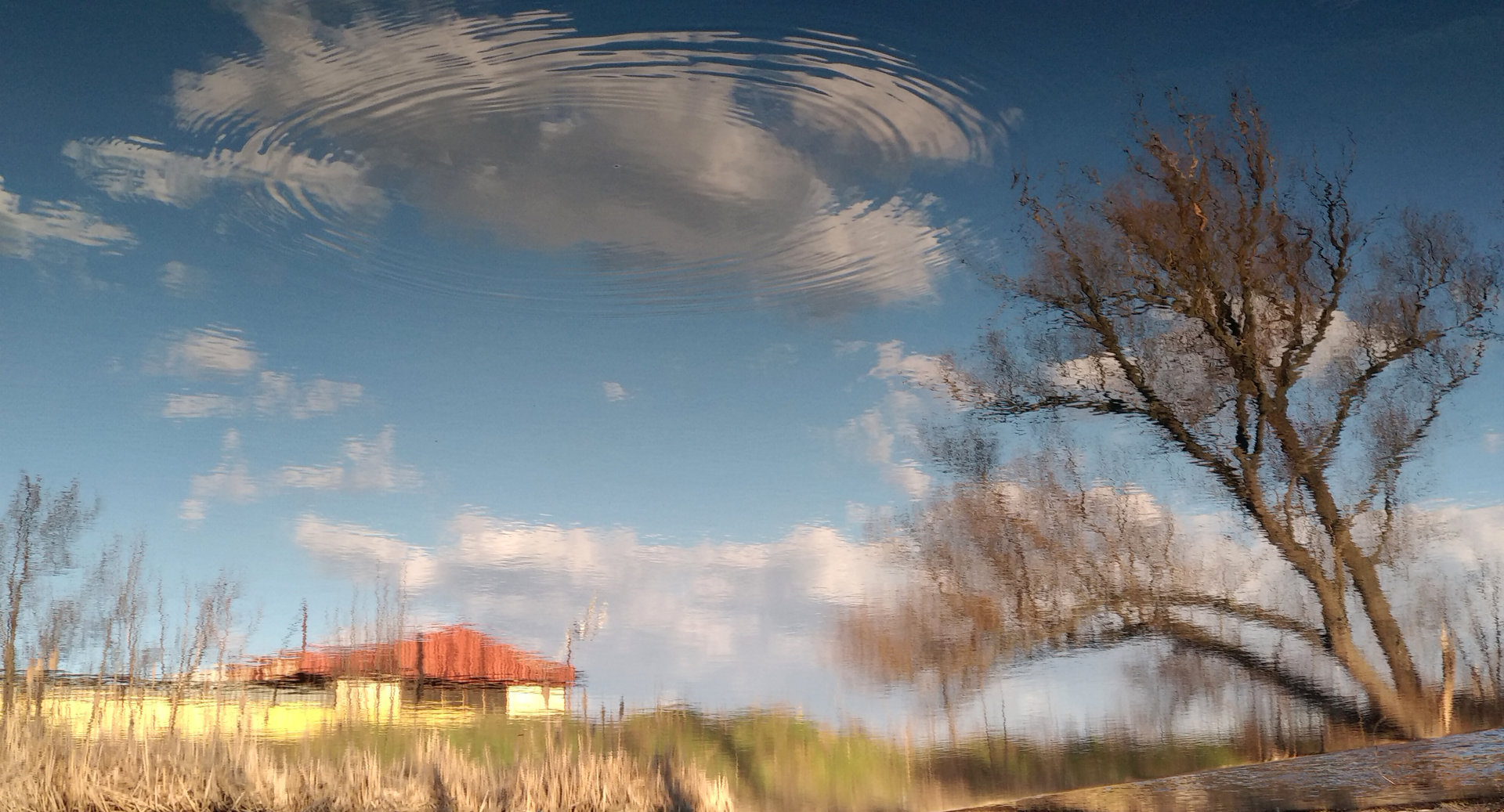 Photo in Abstract | Author Марин Маринов - gari | PHOTO FORUM