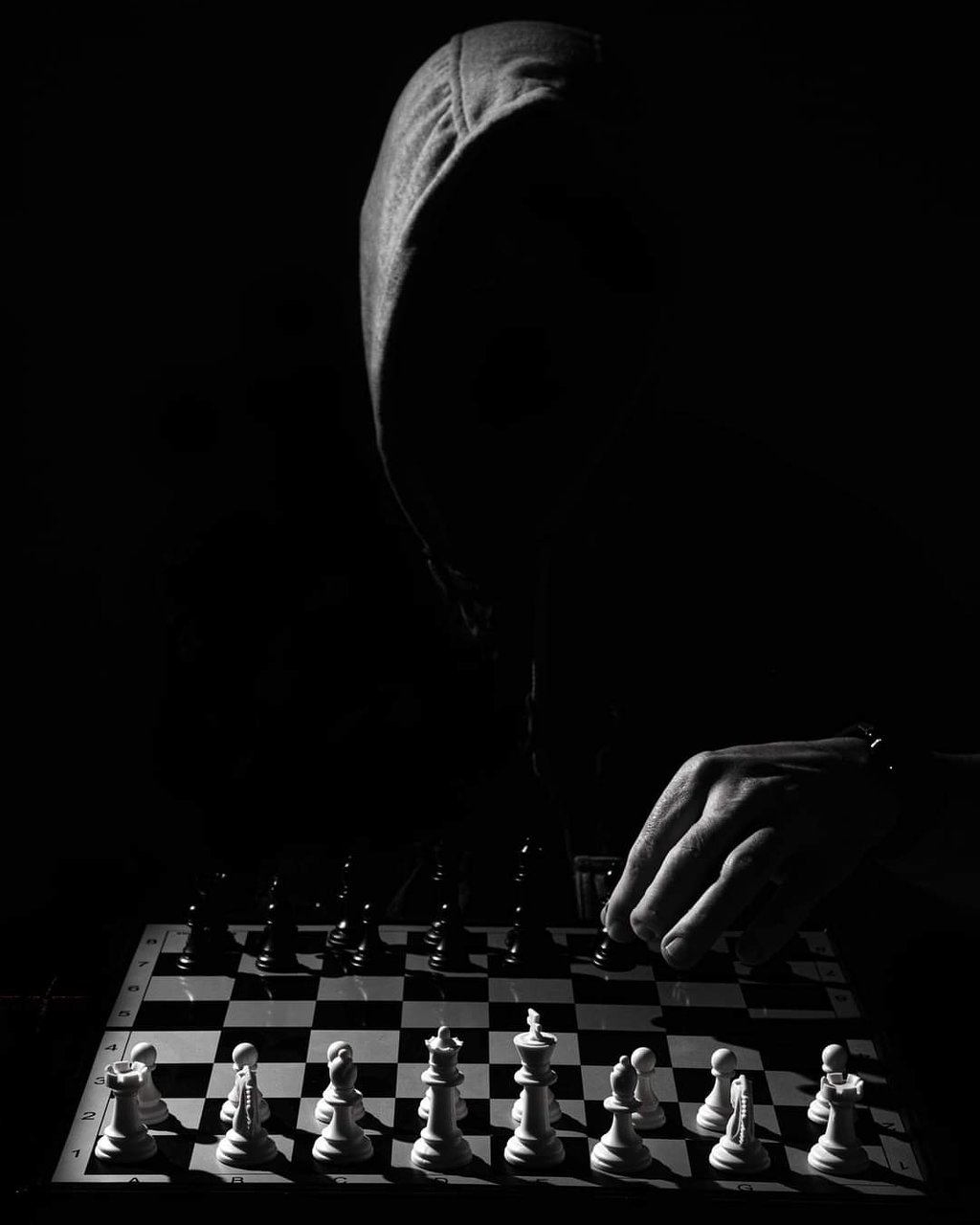 Шах | Author Zlatin  Spasov  - Zlateen | PHOTO FORUM