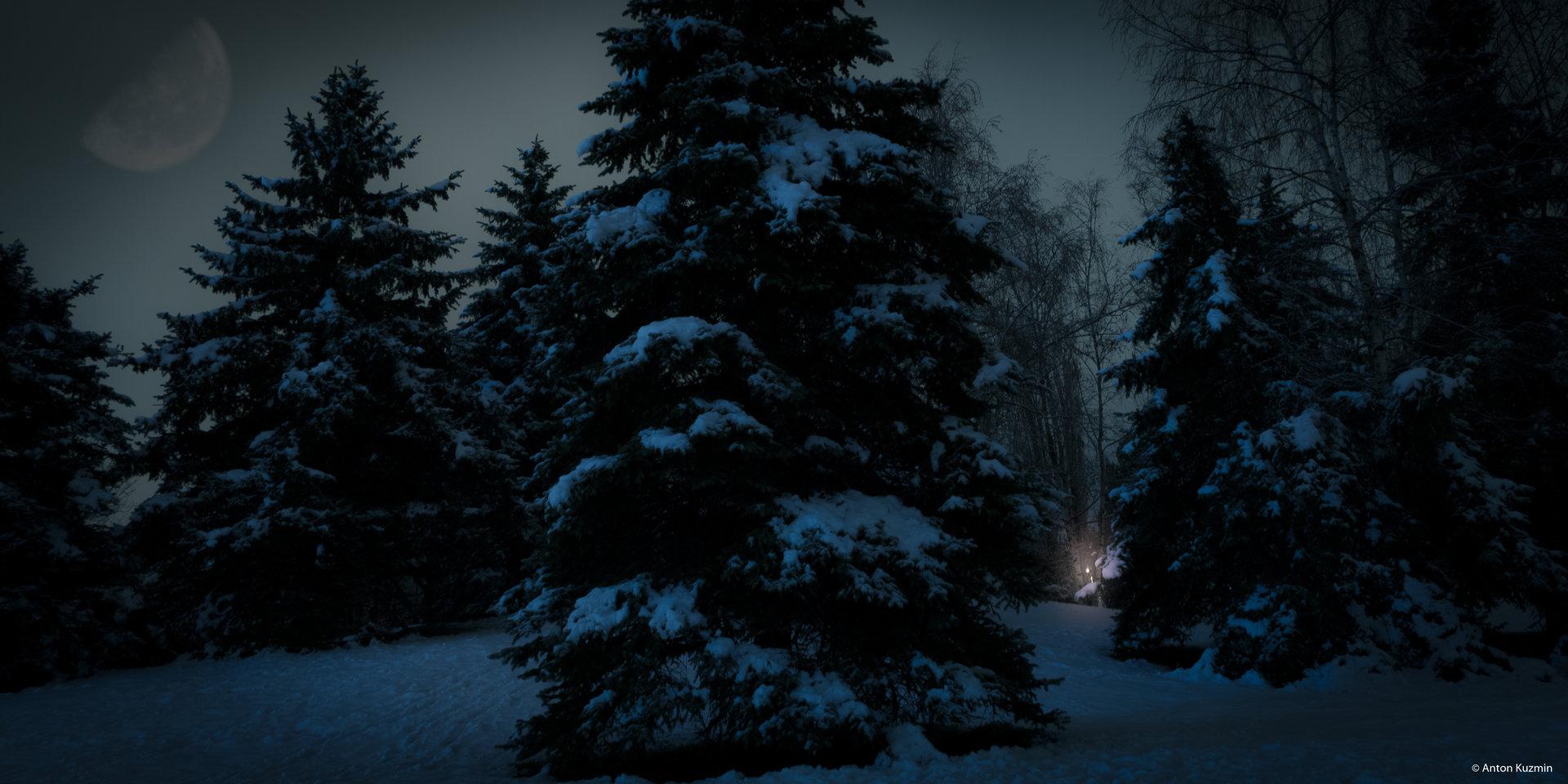 Нощ в гората. от Anton Kuzmin - AVKltd