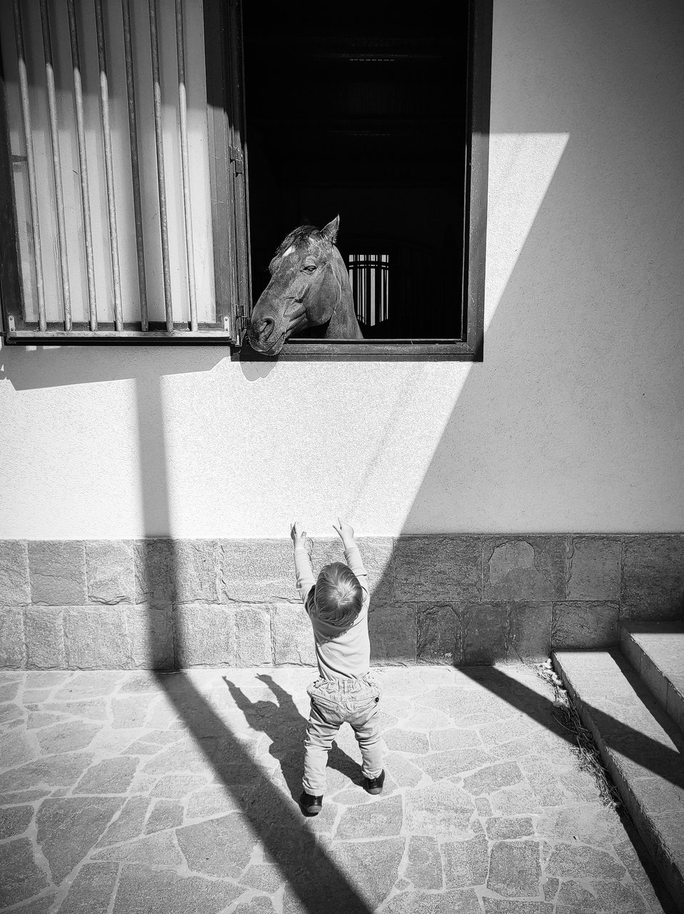 Среща | Author Mihail Minkov - takama | PHOTO FORUM