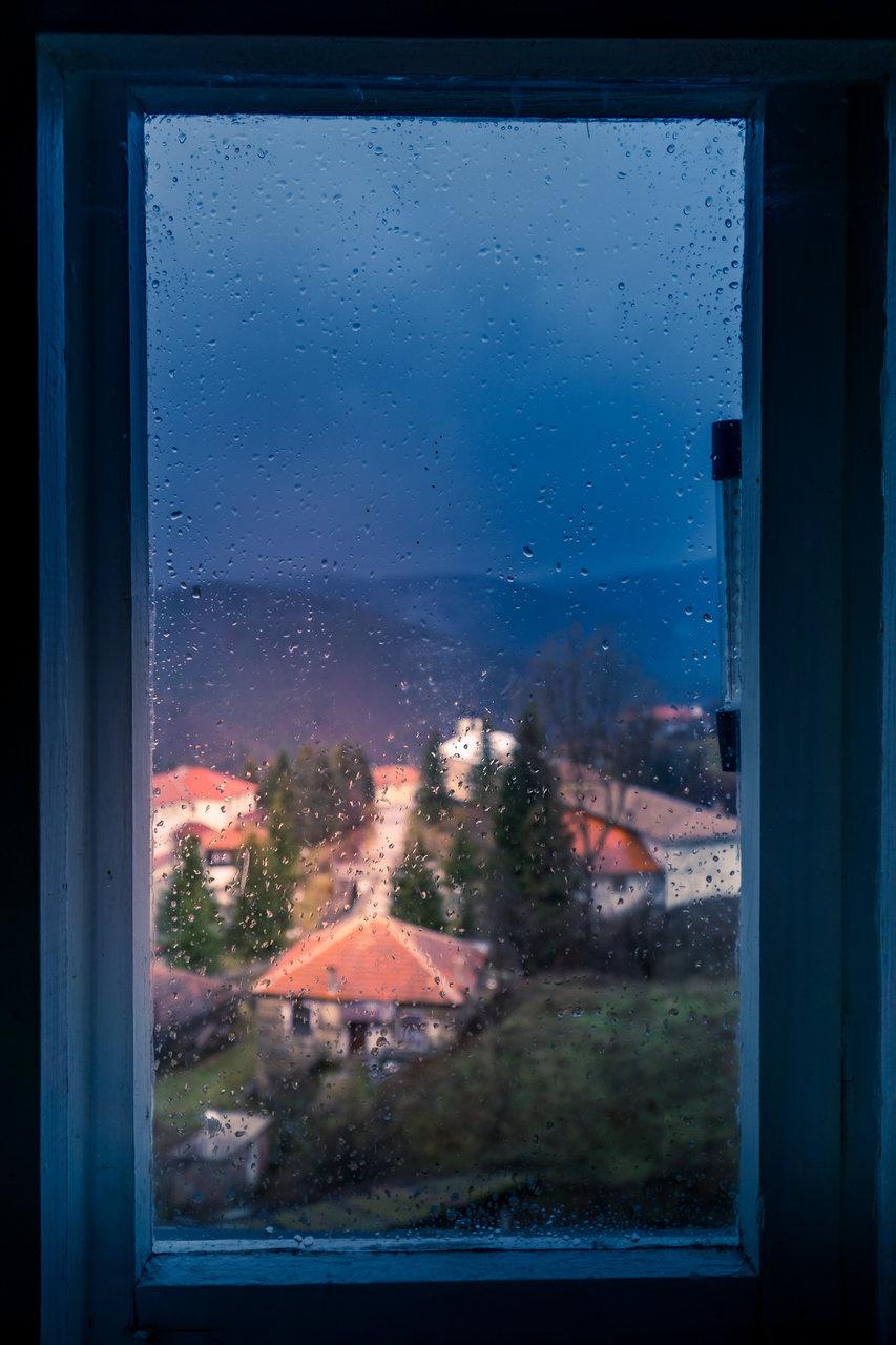 Photo in Daily round | Author Tihomir Petkov - Tihuana | PHOTO FORUM