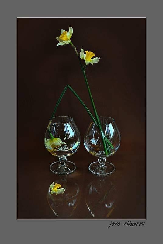 """Жажда"", натюрморт | Author Georgi Ribarov - Djoro | PHOTO FORUM"