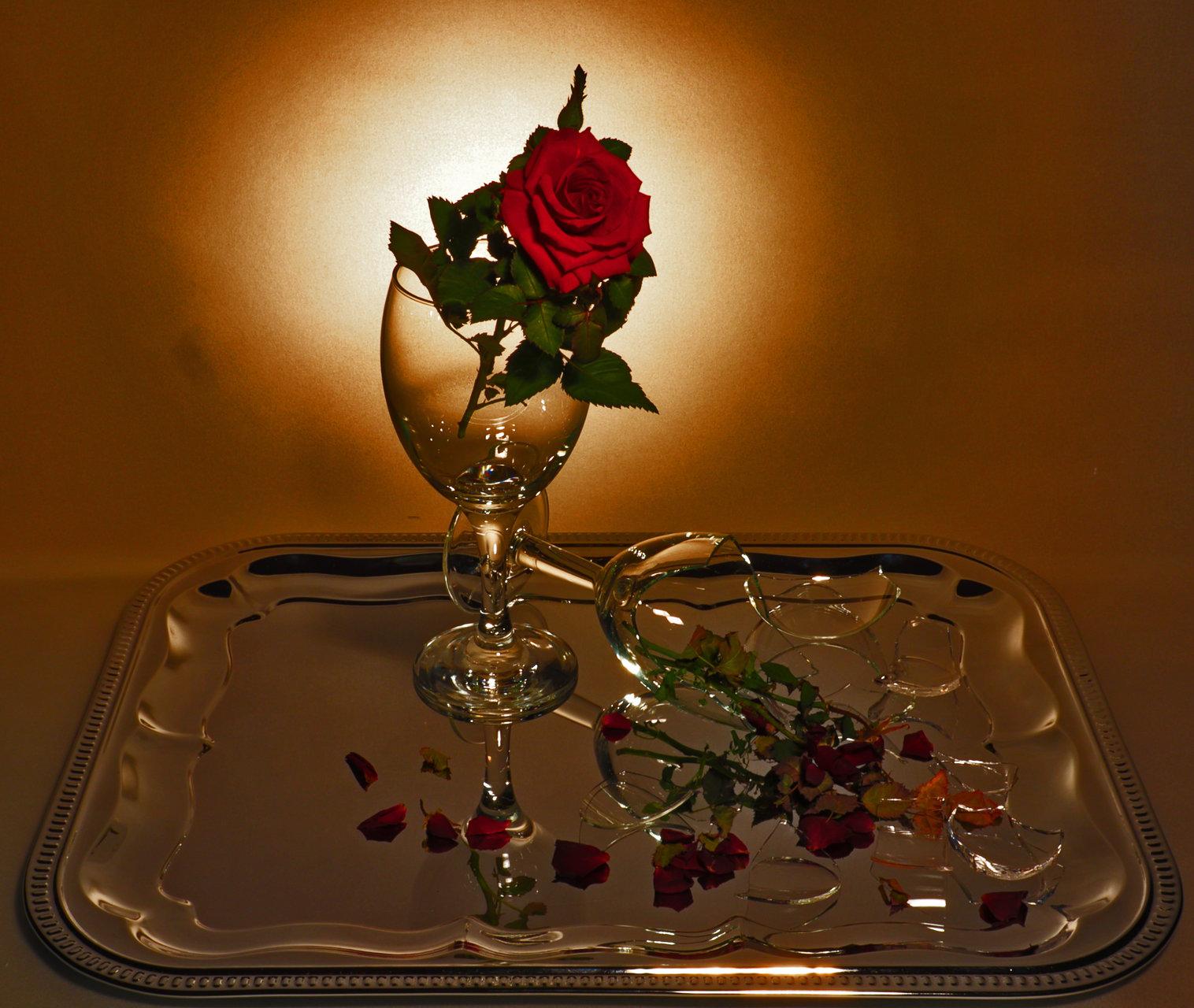 Стъкла и цветя | Author Roza Kenarova - Rozaly_photography | PHOTO FORUM