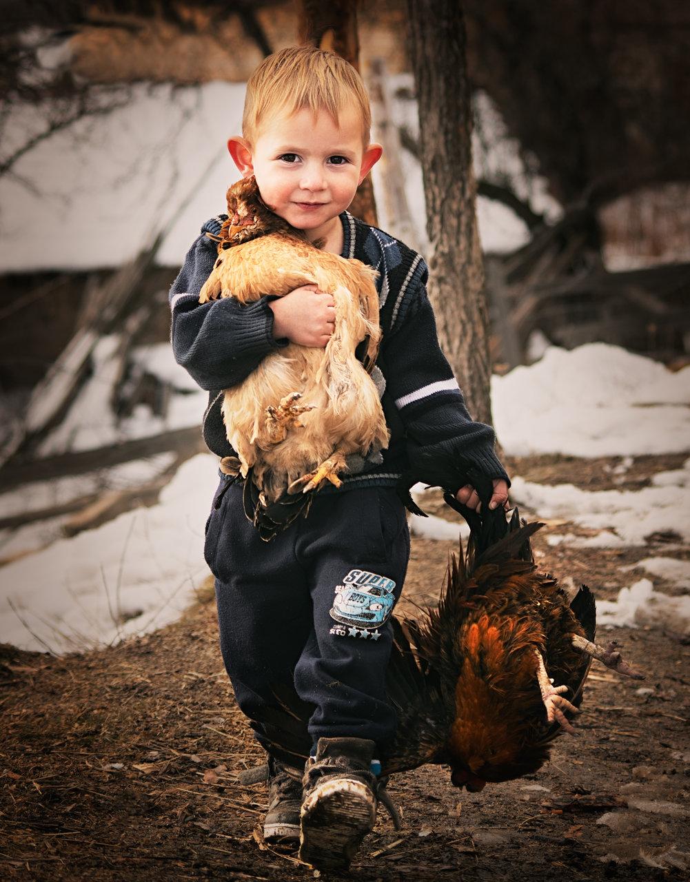 Просто Сабри | Author Nadezhda Raycheva - sunnyhope | PHOTO FORUM