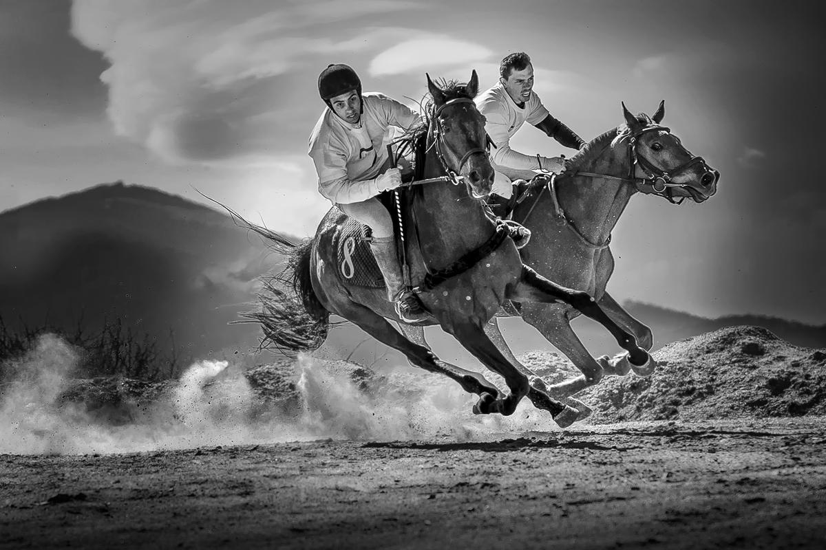 Летящи коне... :) | Author Богдан Стойко - stb | PHOTO FORUM
