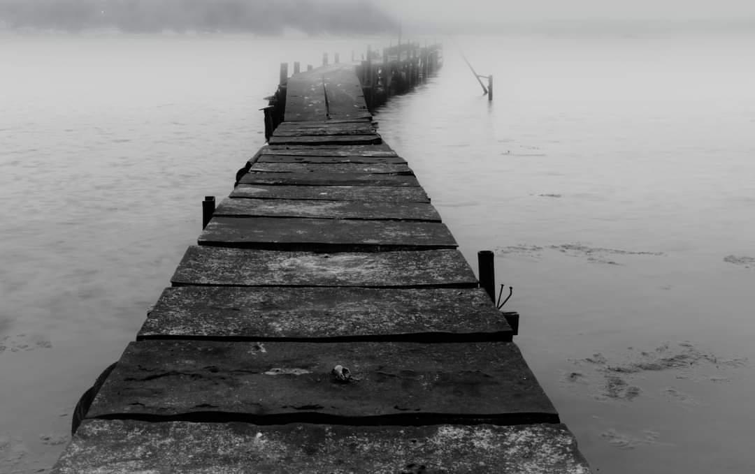 Photo in Nature | Author Sofia Asenikova - sofiakio | PHOTO FORUM
