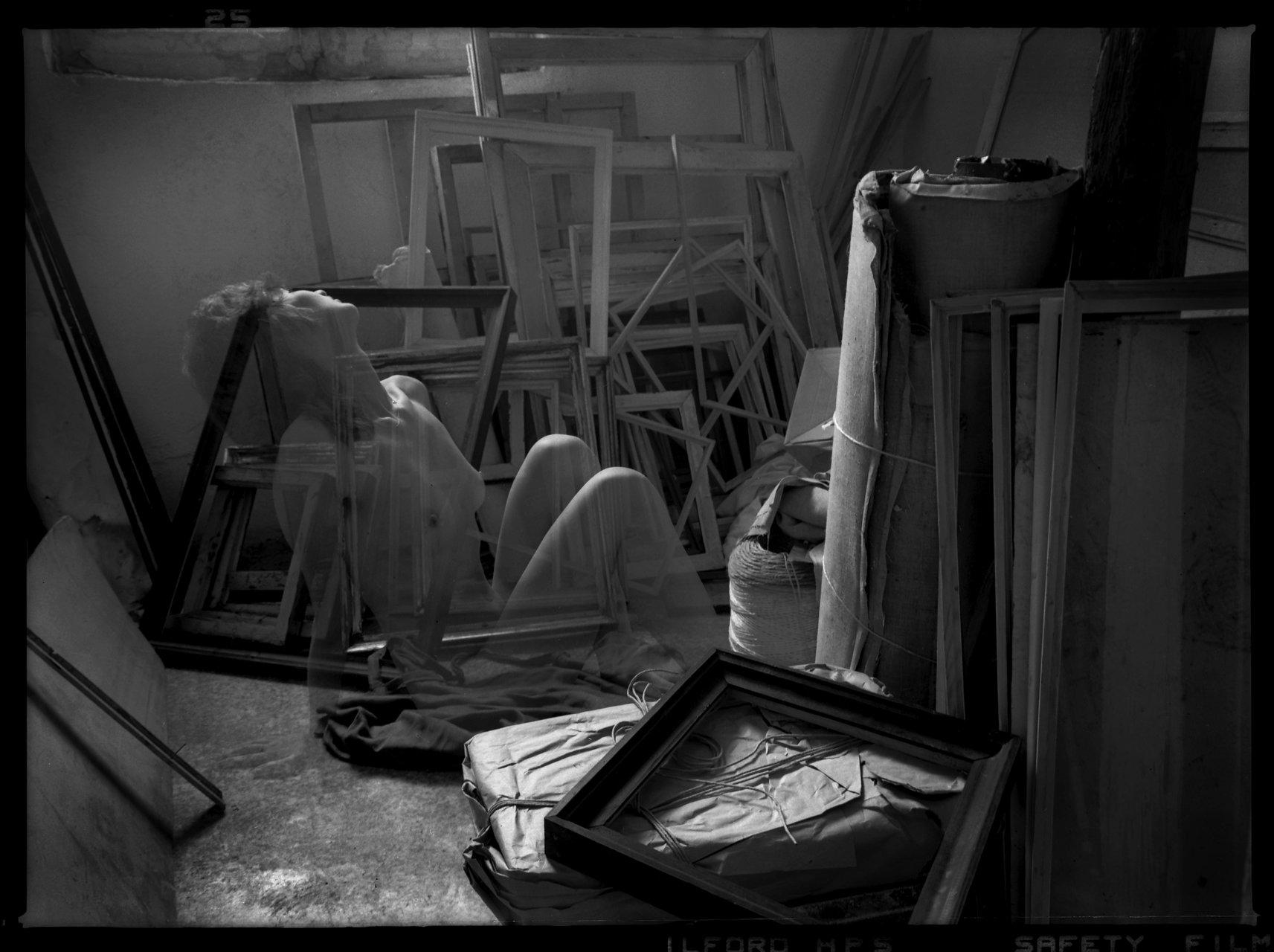 стая  за  рамки | Author IVO BOBEV - IKB | PHOTO FORUM