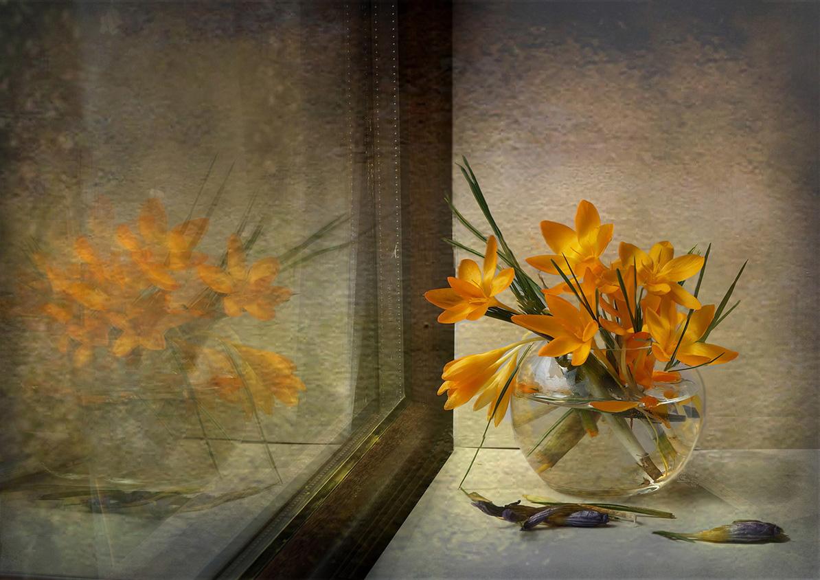Отражение | Author Penka Berberova - polana | PHOTO FORUM