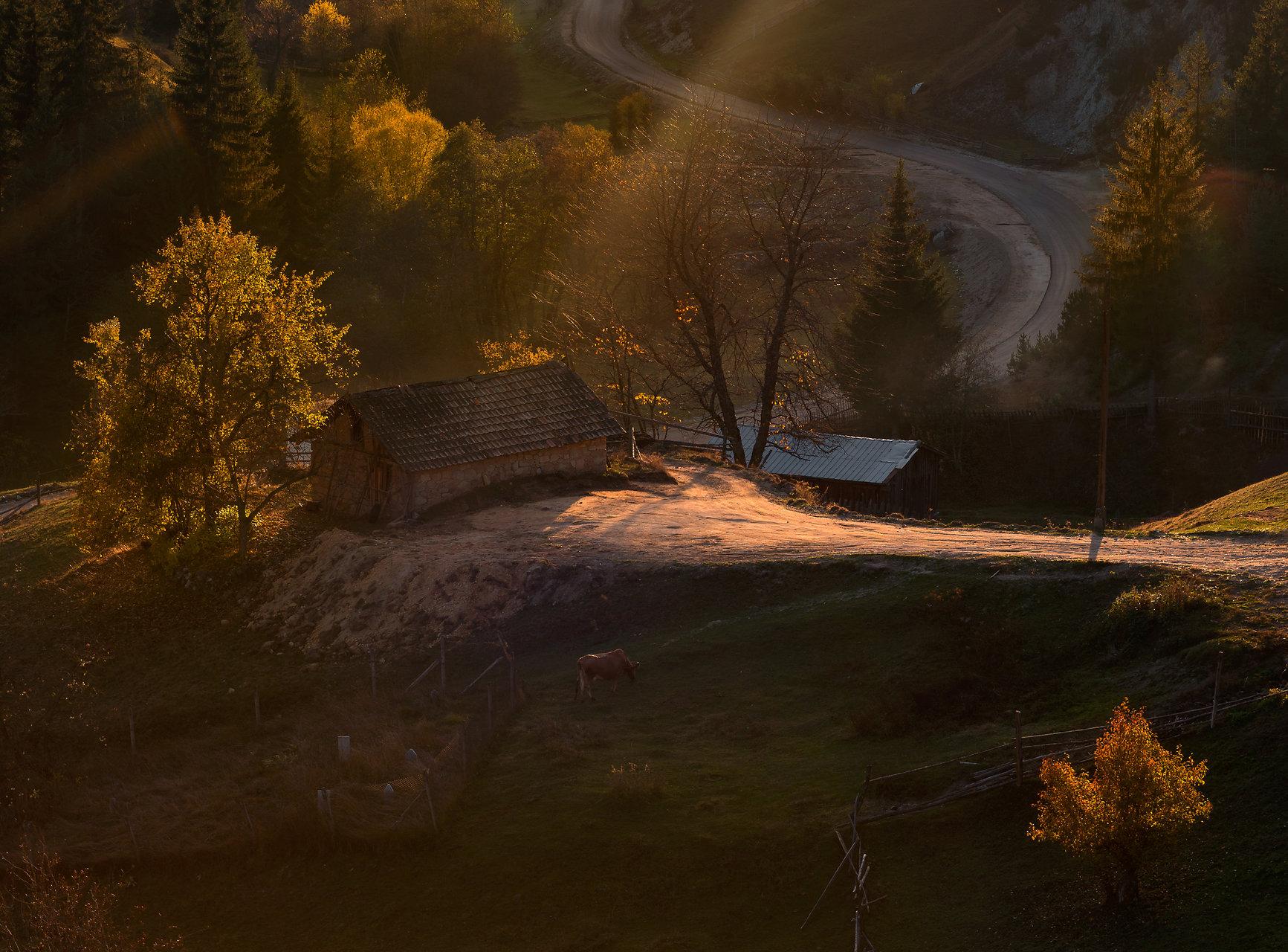 Докосване. Родопа планина. | Author Mariyana Atanasova - Lucero | PHOTO FORUM