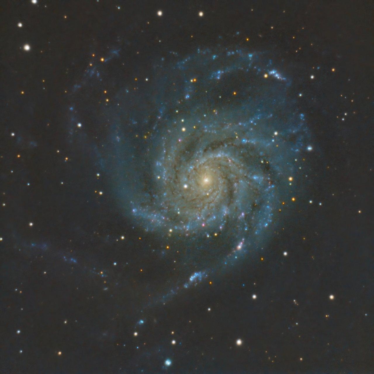 M101 - Галактиката Въртележка   Author Ivan Raichev - sektor   PHOTO FORUM