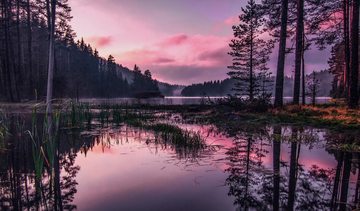 За пръв път видях такива цветове които се променяха всеки миг   Author Богдан Стойко - stb   PHOTO FORUM