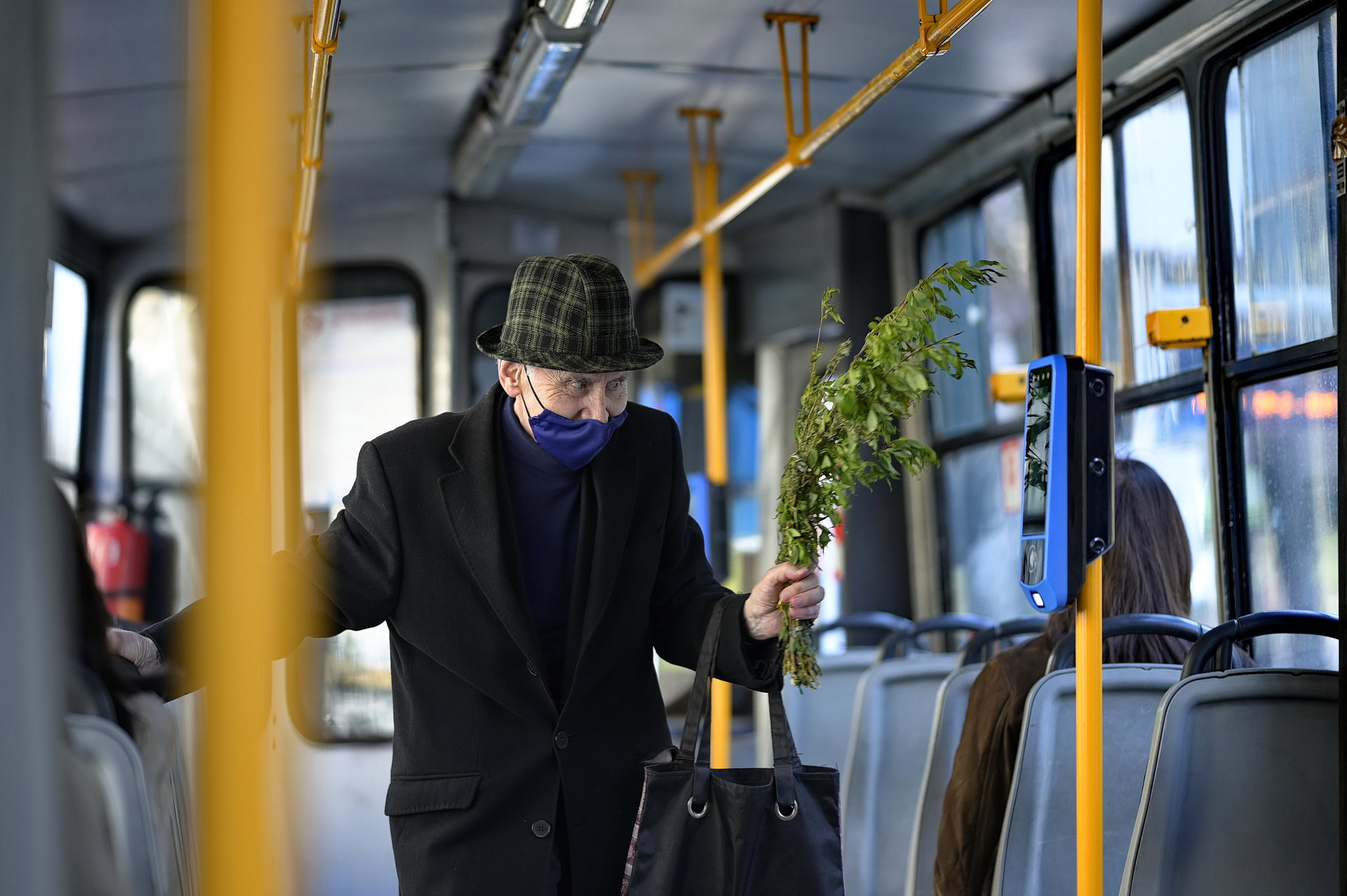 Photo in Daily round | Author Antonio Georgiev - toni.ai | PHOTO FORUM