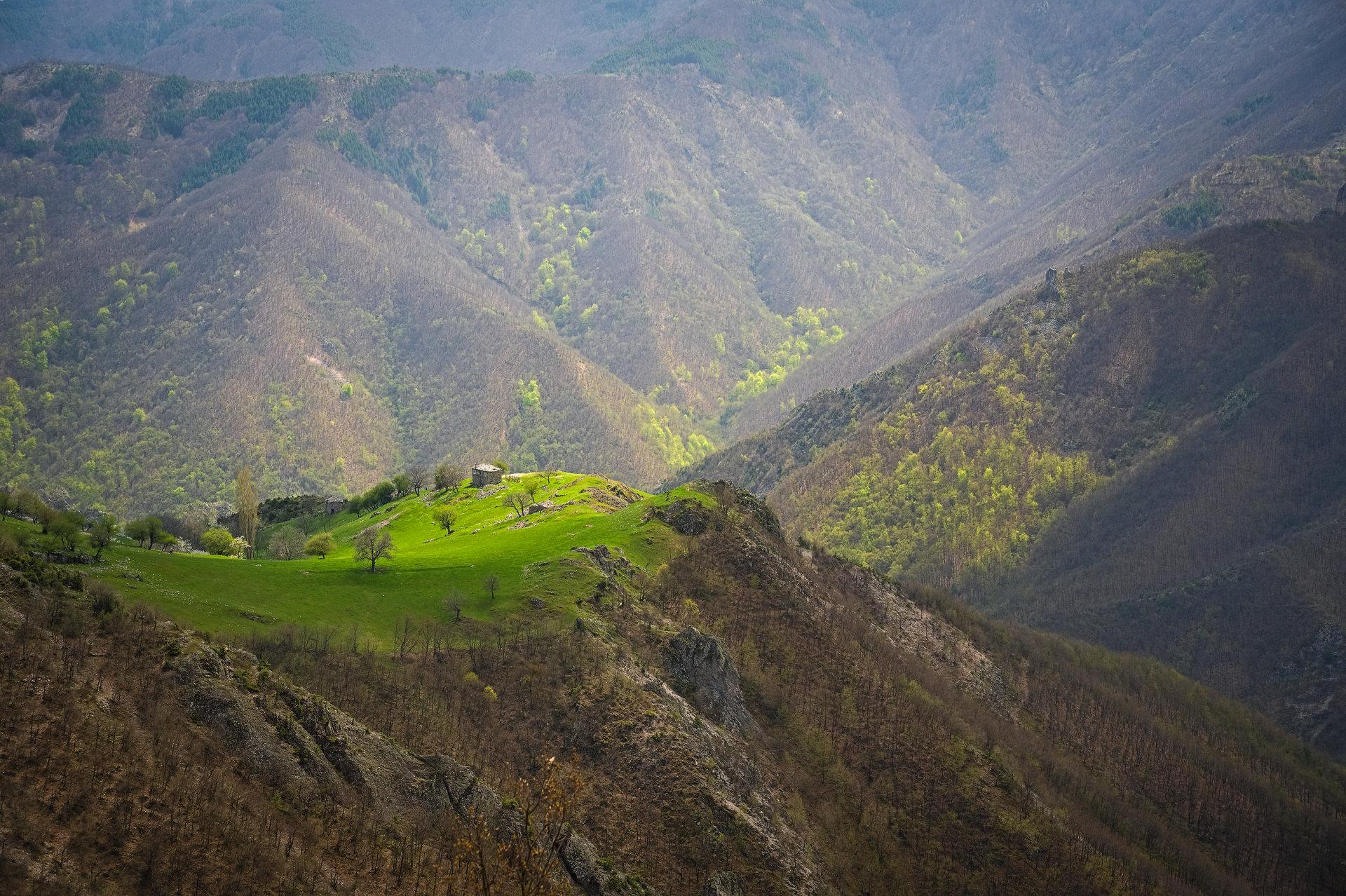 Photo in Nature | Author Явор Николов - avo | PHOTO FORUM