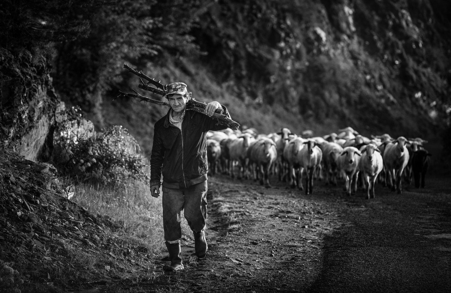 Един ден по-малко   Author Vladimir Karamazov - Vlado79   PHOTO FORUM