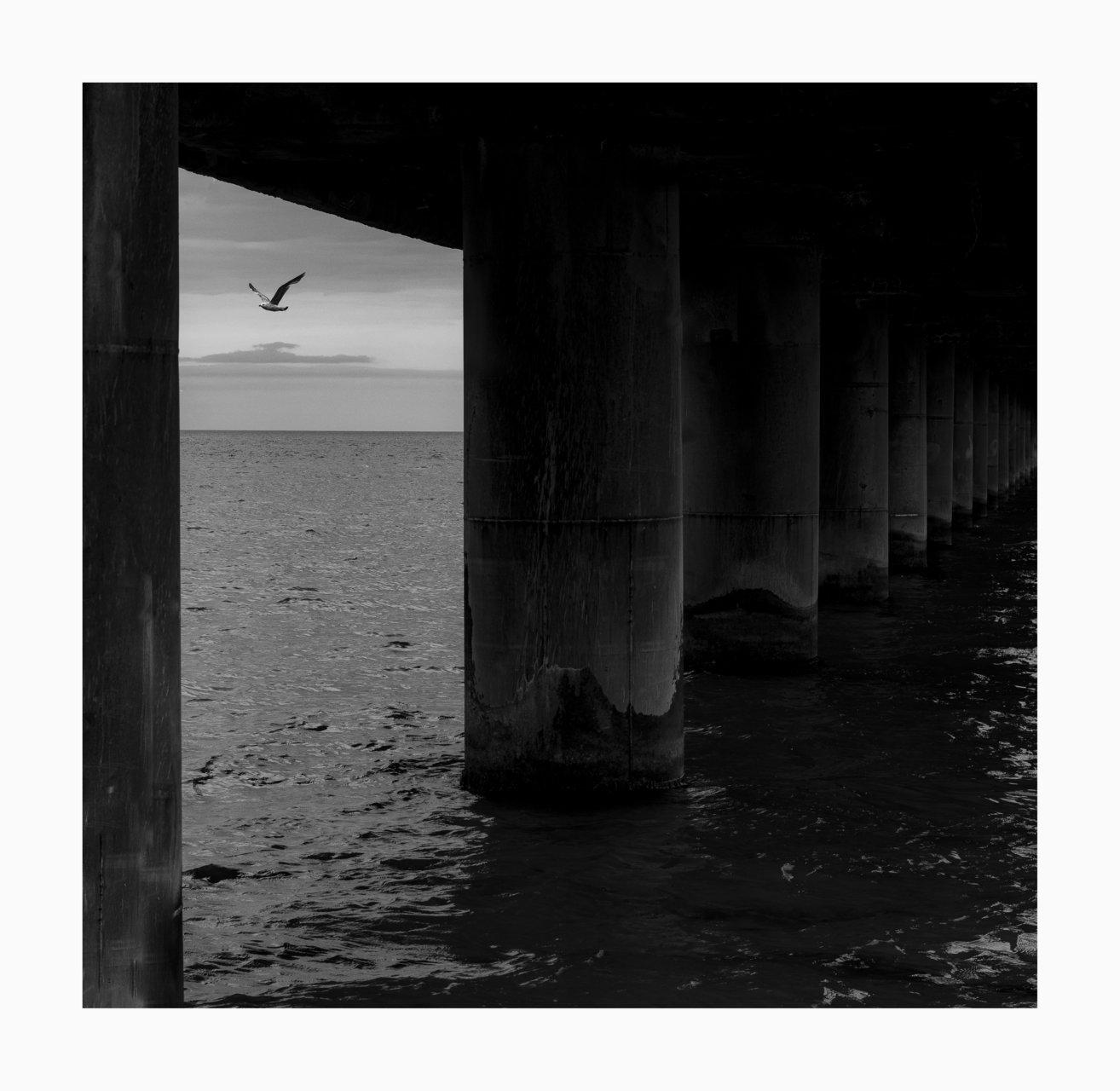 Волност... | Author Stanil Lazarov - Standil | PHOTO FORUM