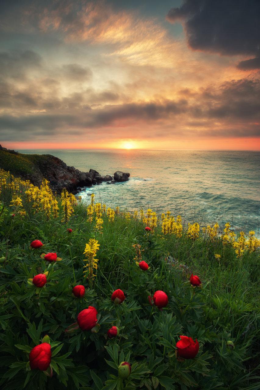 Photo in Landscape   Author Kostadin Madzharov - _koko_   PHOTO FORUM