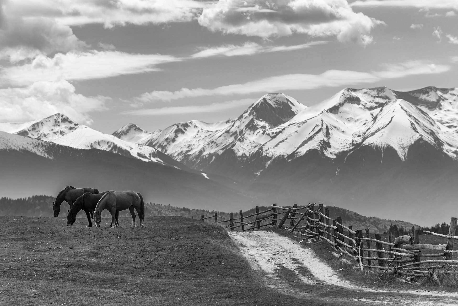 Photo in Landscape   Author Петър Младенов - peter_m   PHOTO FORUM