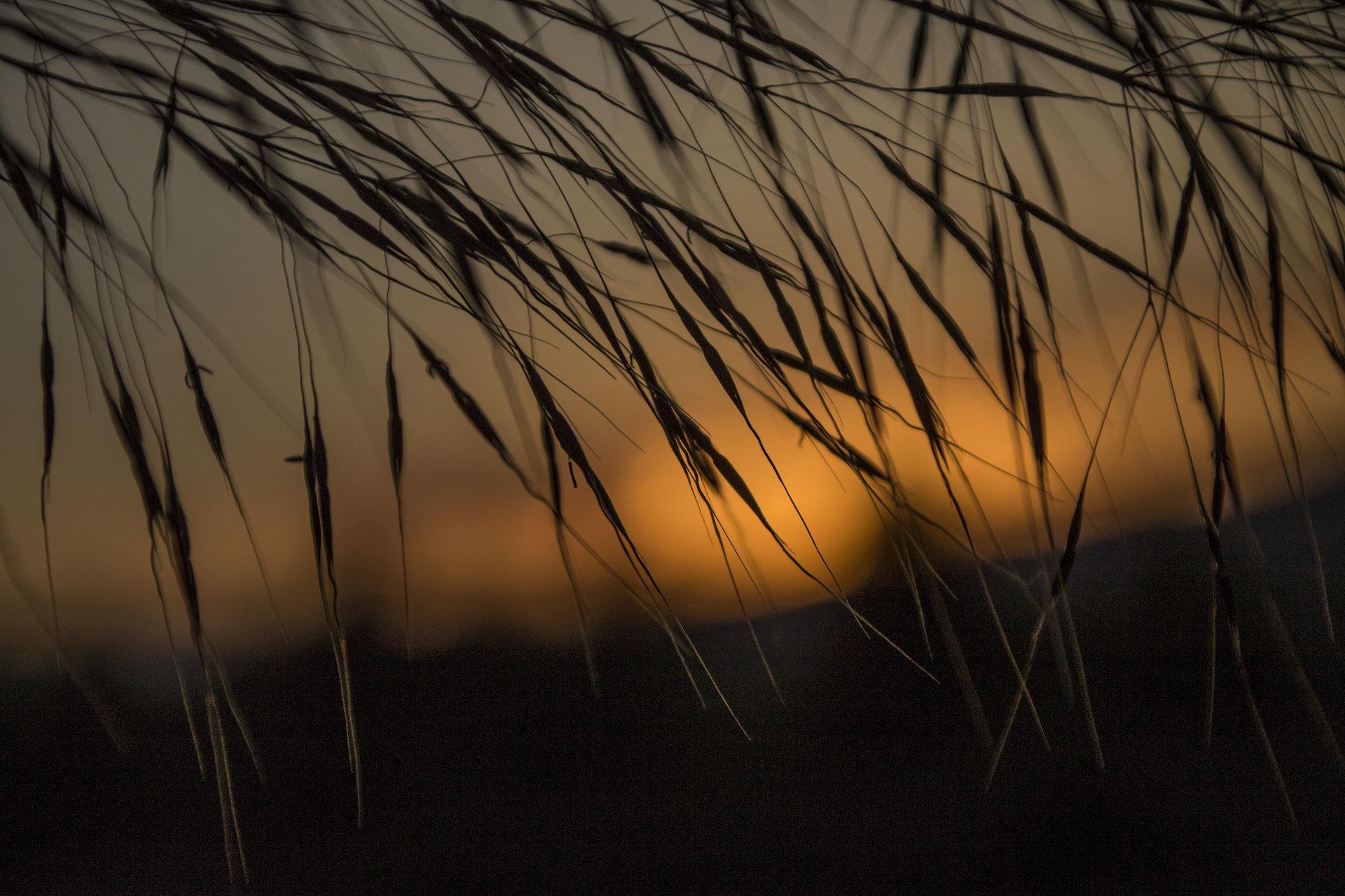 На залез слънце от iliya levkov - levkov87