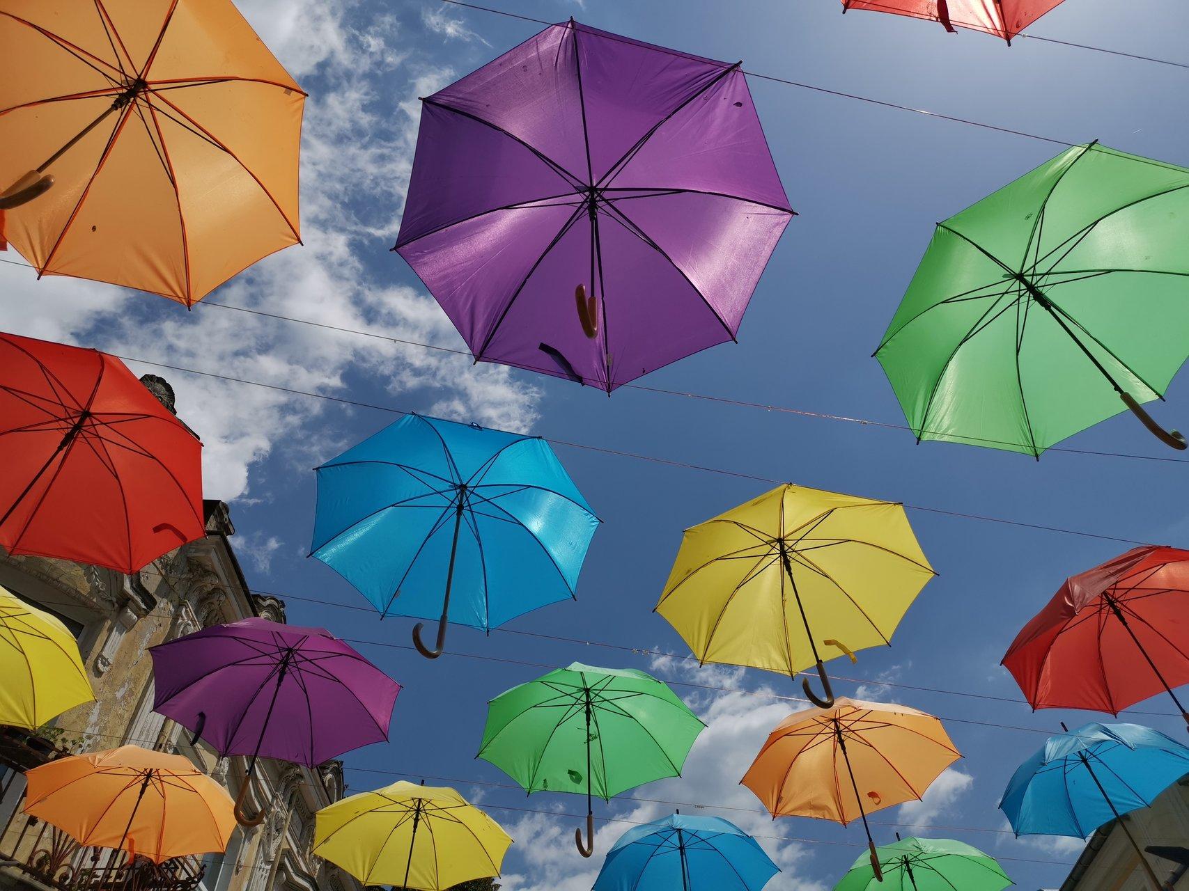 Цветно вдъхновение | Author Krasimir Kirilov - krass66 | PHOTO FORUM