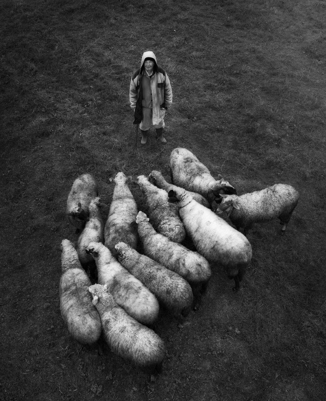 Photo in Reportage | Author Radoslav Sviretsov - rgsphot | PHOTO FORUM