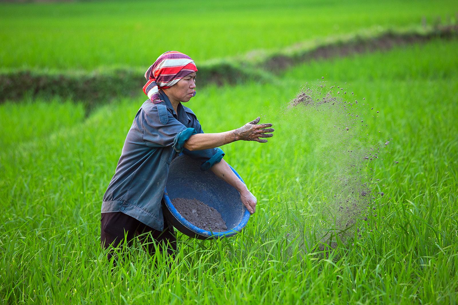 Rural life | Author Георги Георгиев - zeromx | PHOTO FORUM