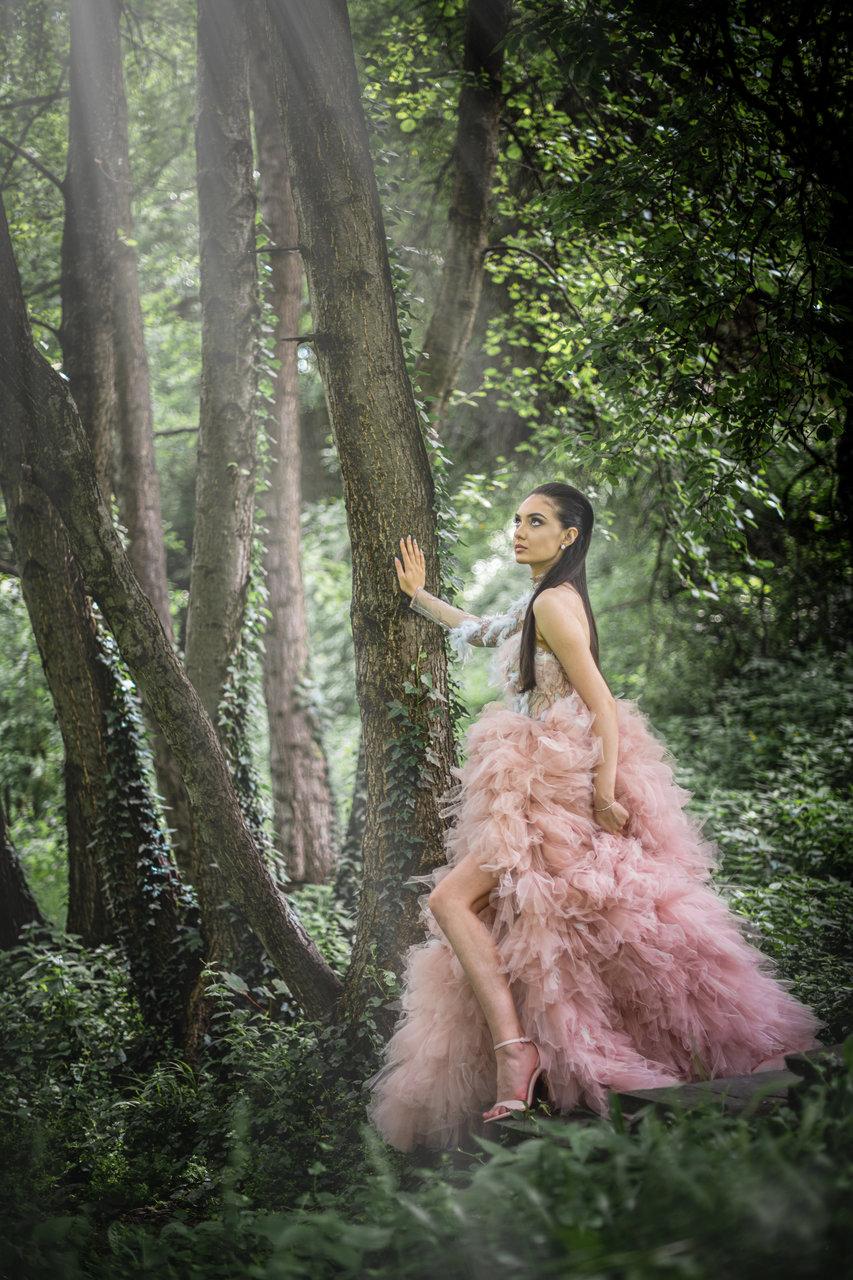 Beautiful forest от Marin Marinov - cashbandit18