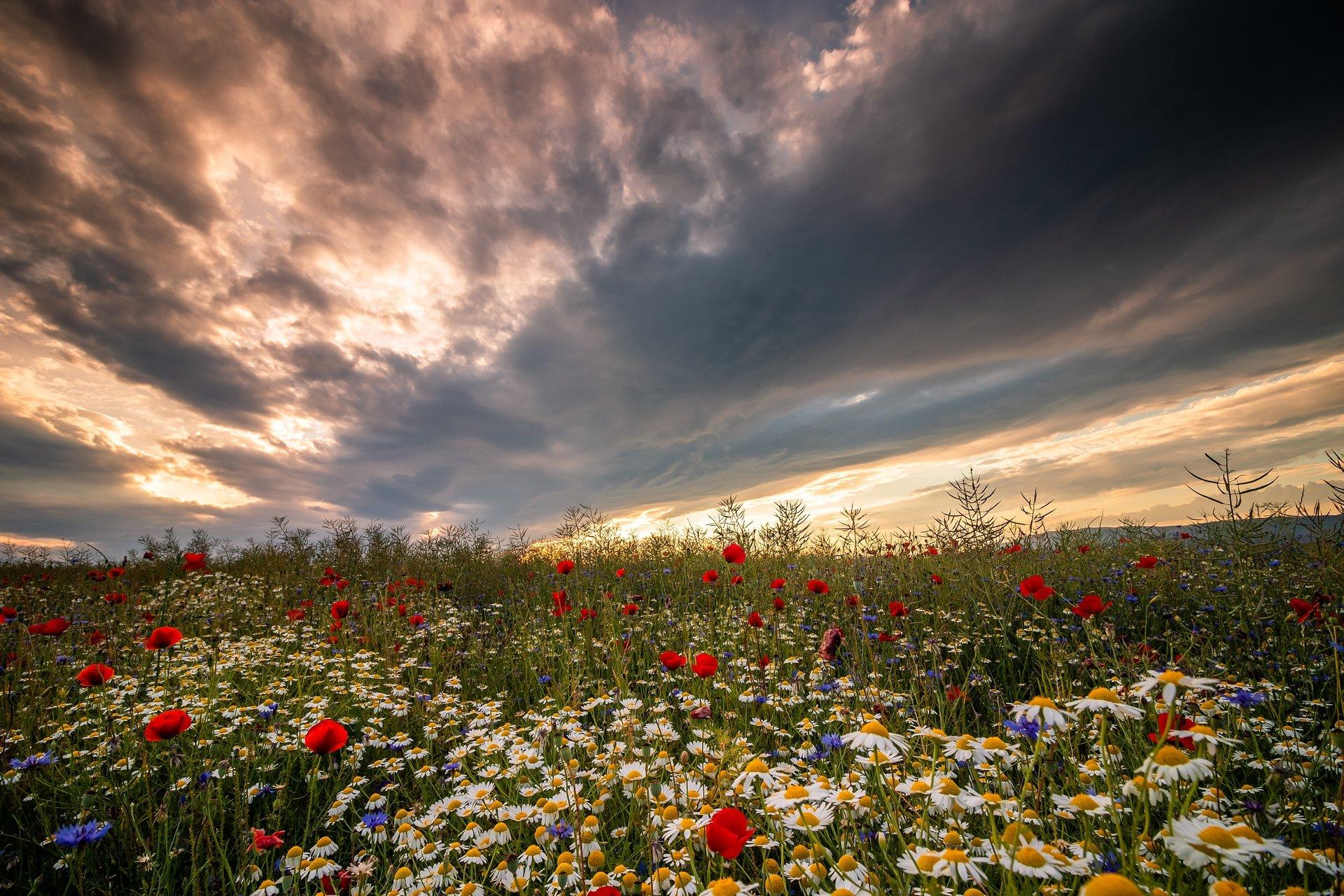 Photo in Landscape | Author Todor Todorov - skyblue | PHOTO FORUM